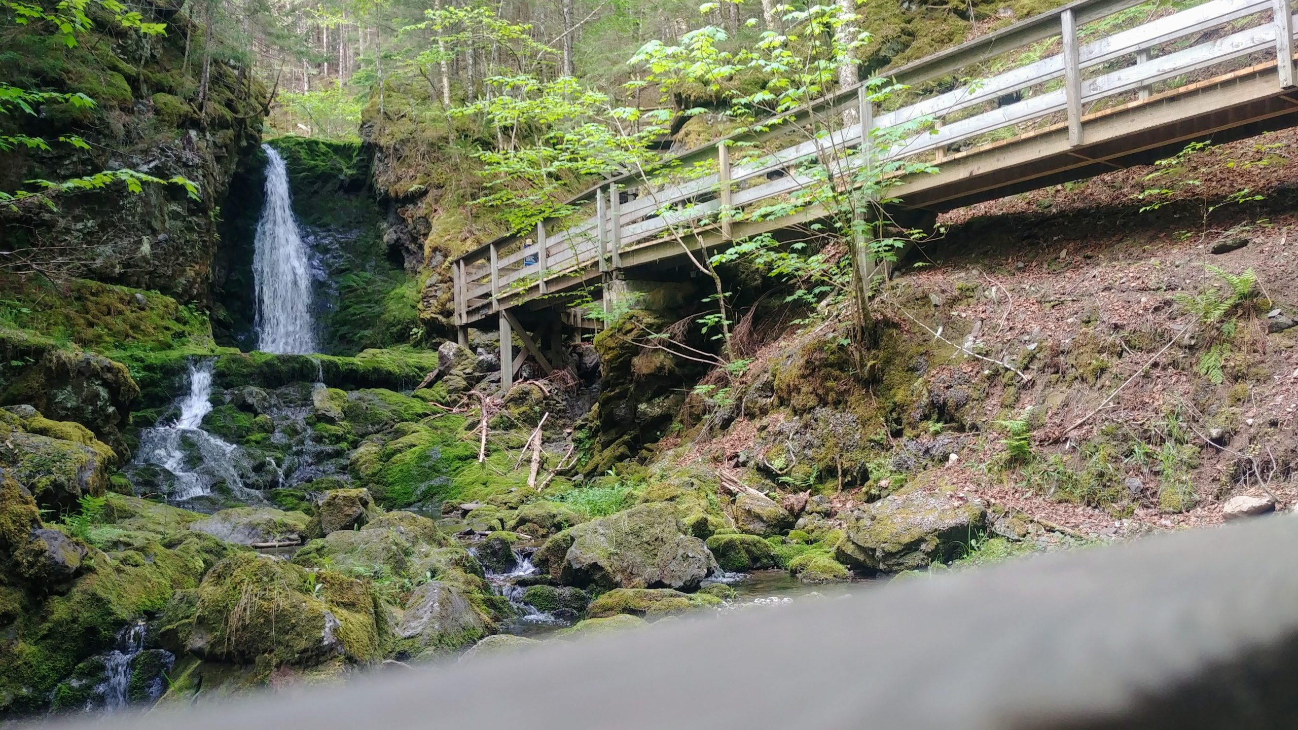 Chutes Dickson parc national Fundy nouveau-brunswick