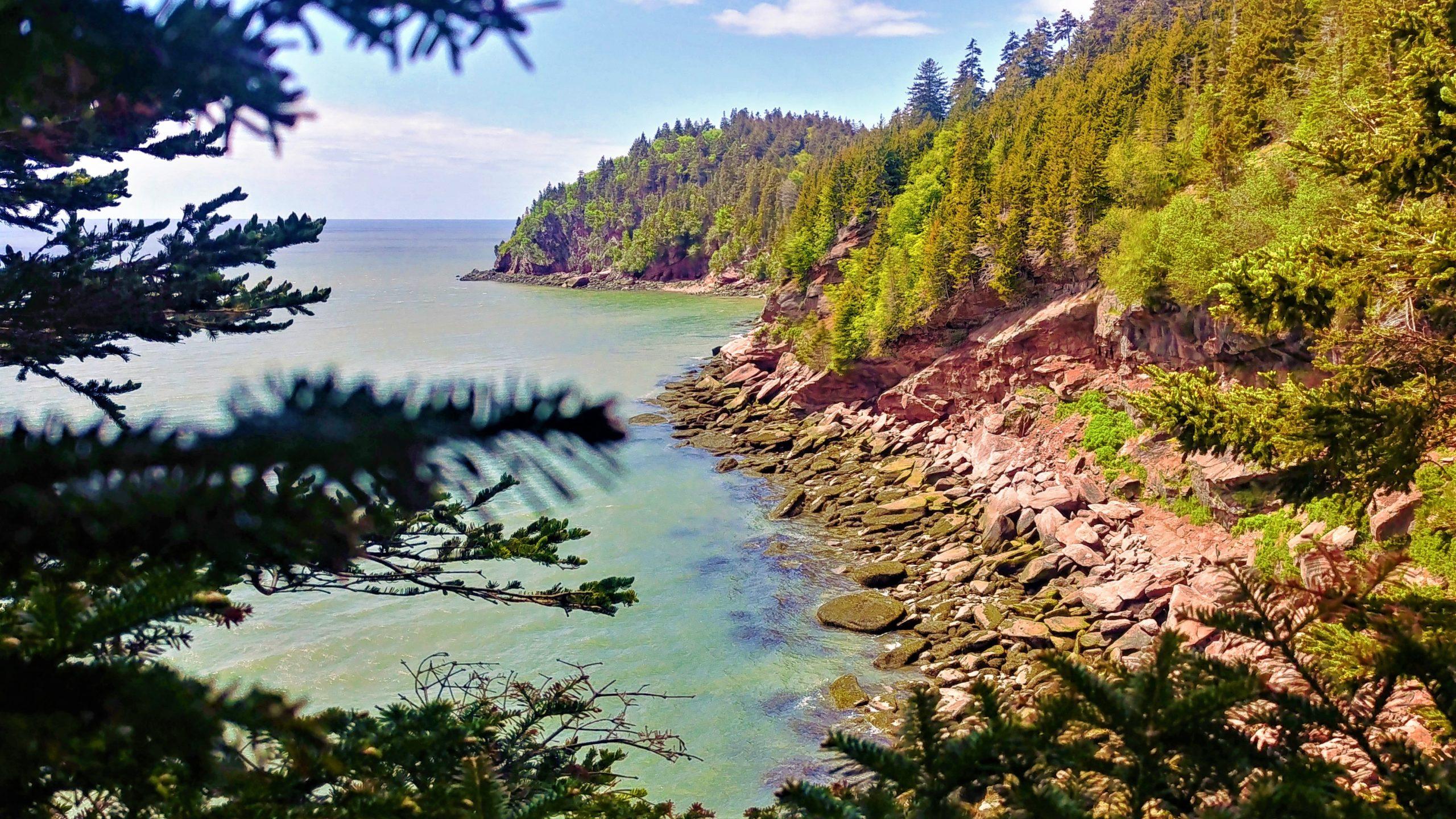 Parc national Fundy randonnée Nouveau-brunswick canada blog voyage arpenter le chemin