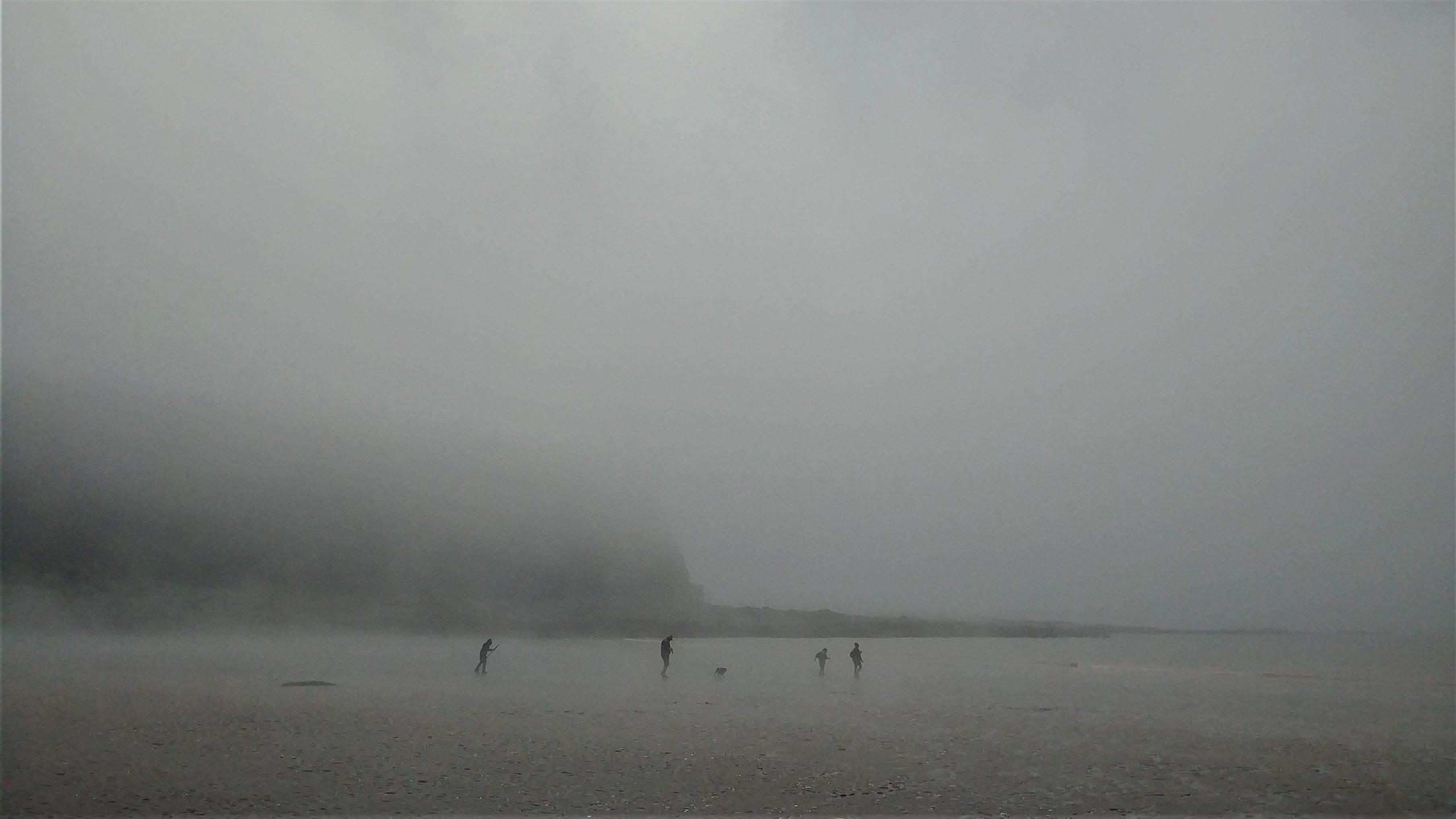 Cap Enragé Pebble Beach que faire activités baie de fundy itinéraire road-trip canada