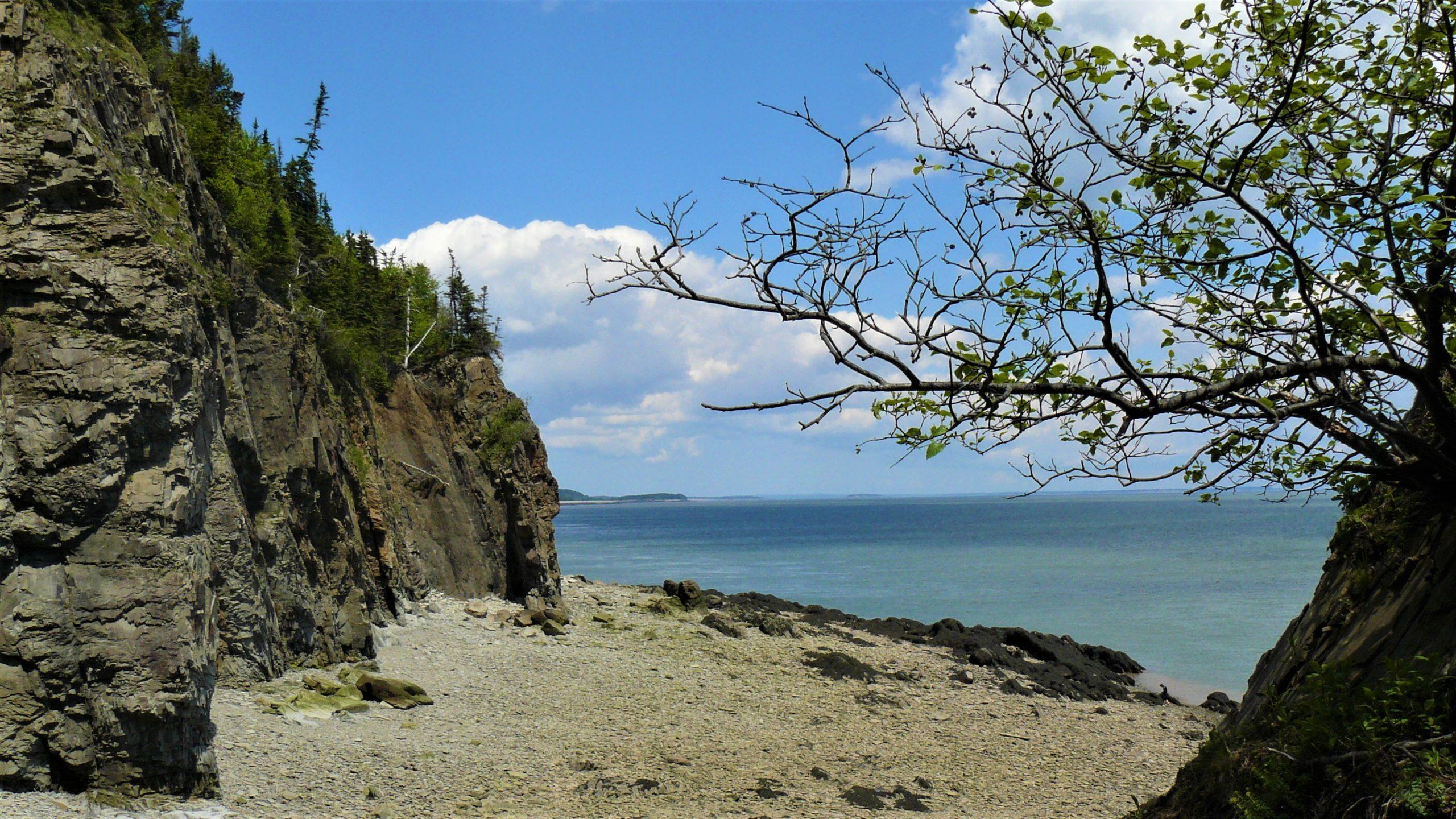 Cap Enragé plage de l'île Barn Marsh baie de fundy redécouvrir nouveau-Brunswick