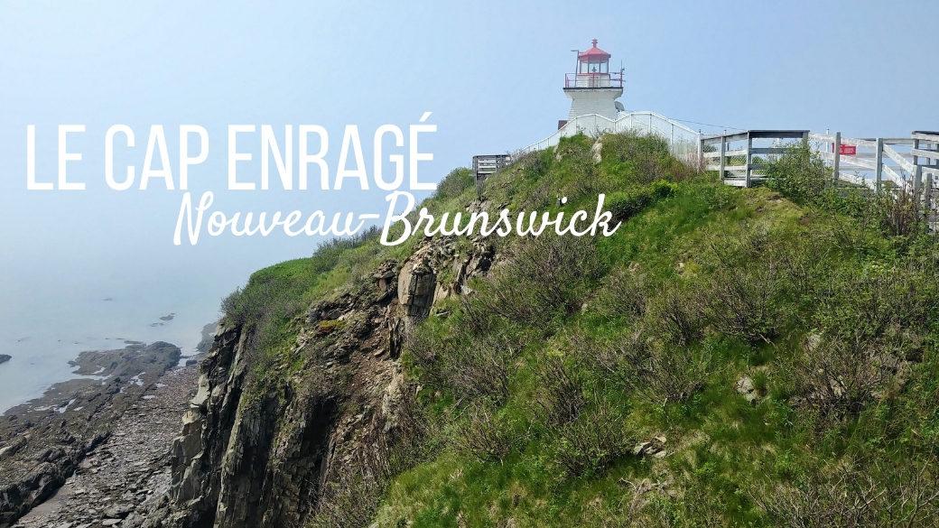 Visiter le Cap Enragé - Nouveau-Brunswick