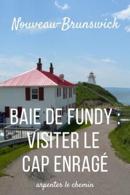 Visiter le Cap Enragé dans la baie de Fundy __ Nouveau-Brunswick, Canada