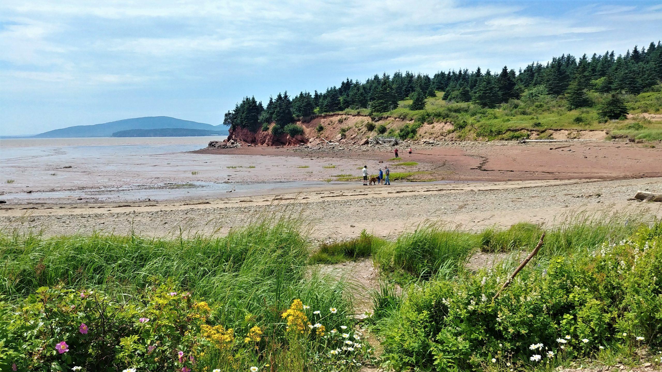 Dorchester Cape falaises plage à voir près de Sackville Nouveau-Brunswick