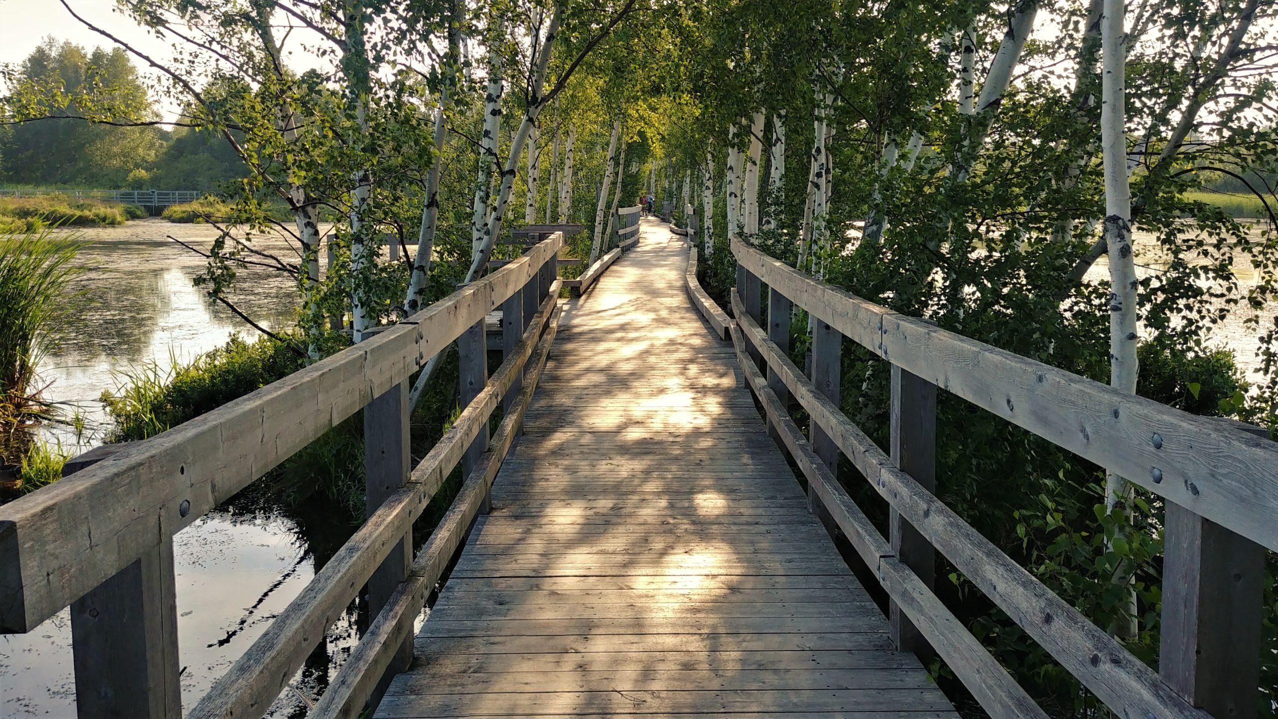 Sackville que voir parc de la Sauvagine Waterfowl park blog voyage Nouveau-Brunswick Canada Arpenter le chemin