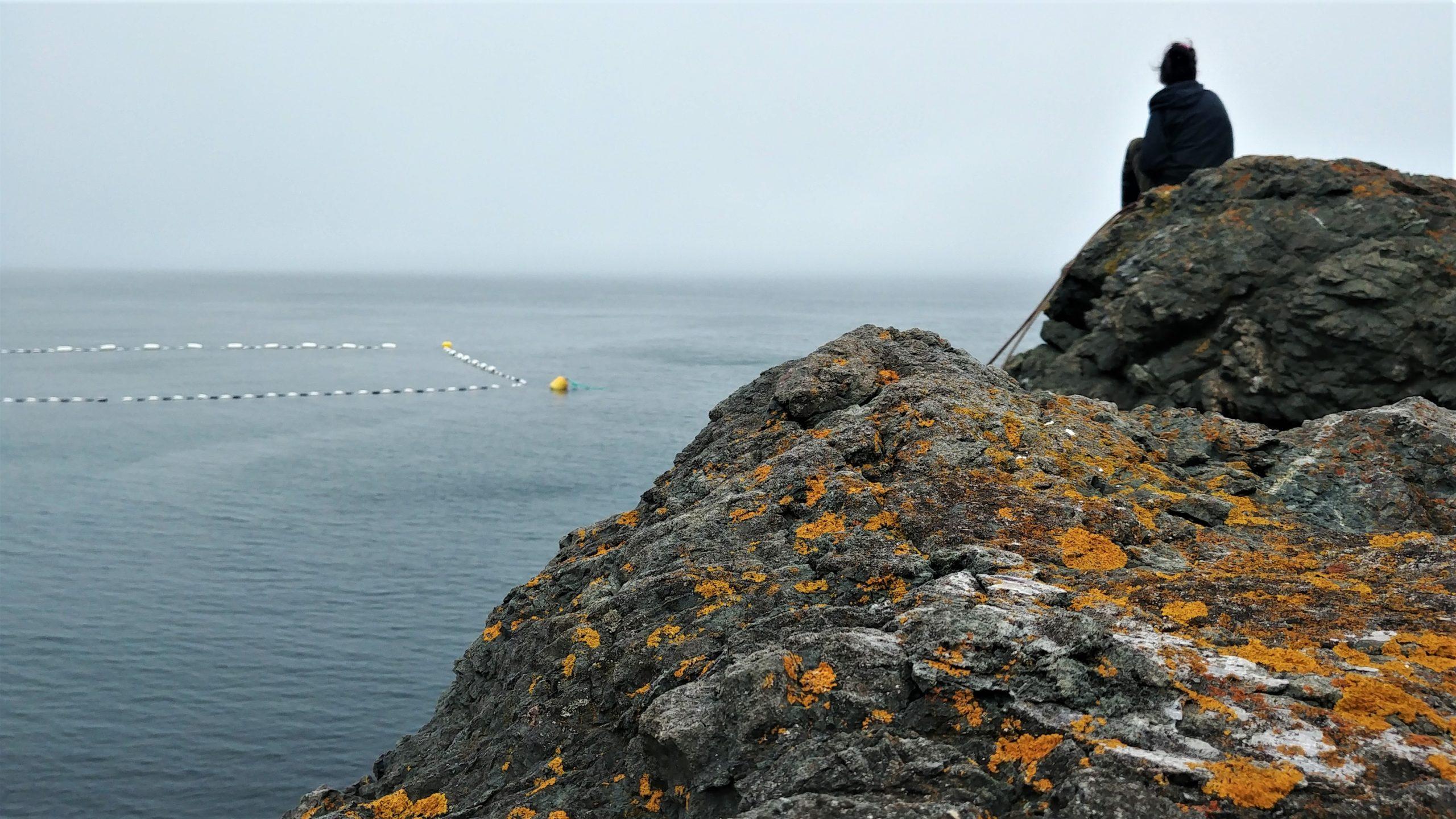 Grand Manan que faire brouillard blog voyage Nouveau-Brunswick Arpenter le chemin