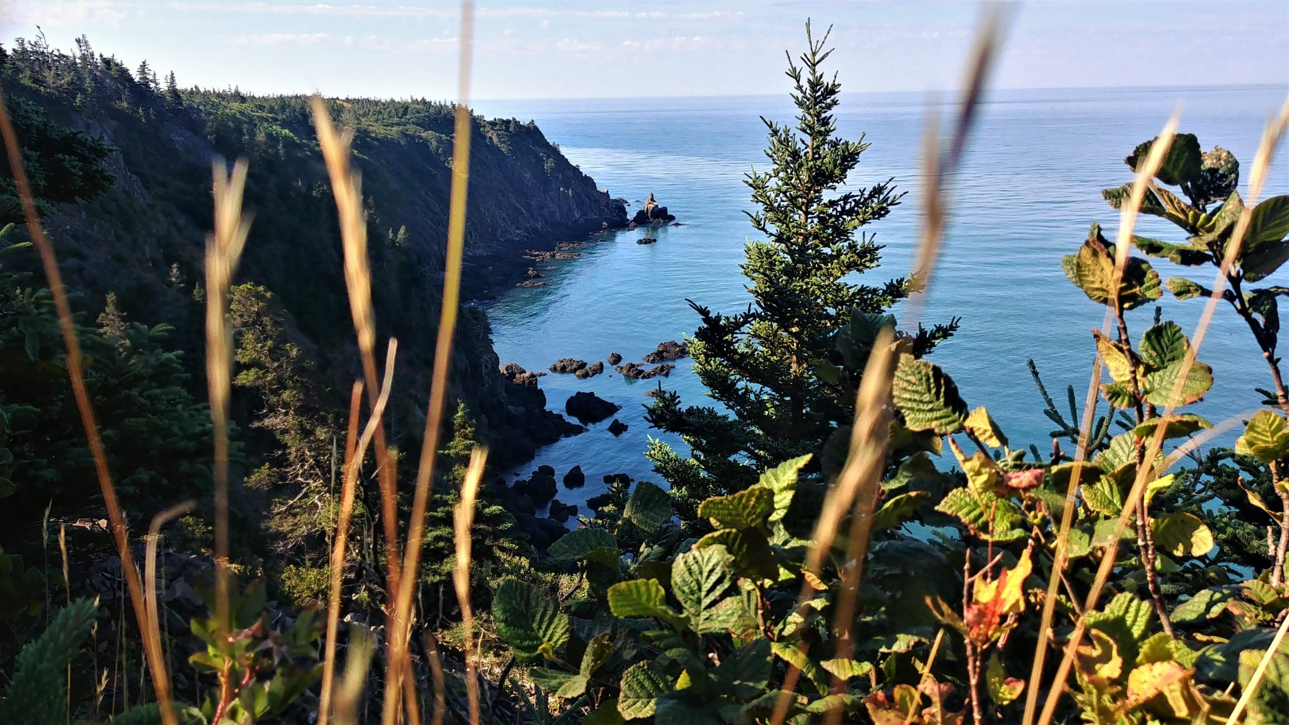 Grand Manan randonnée Red Trail Hay Point