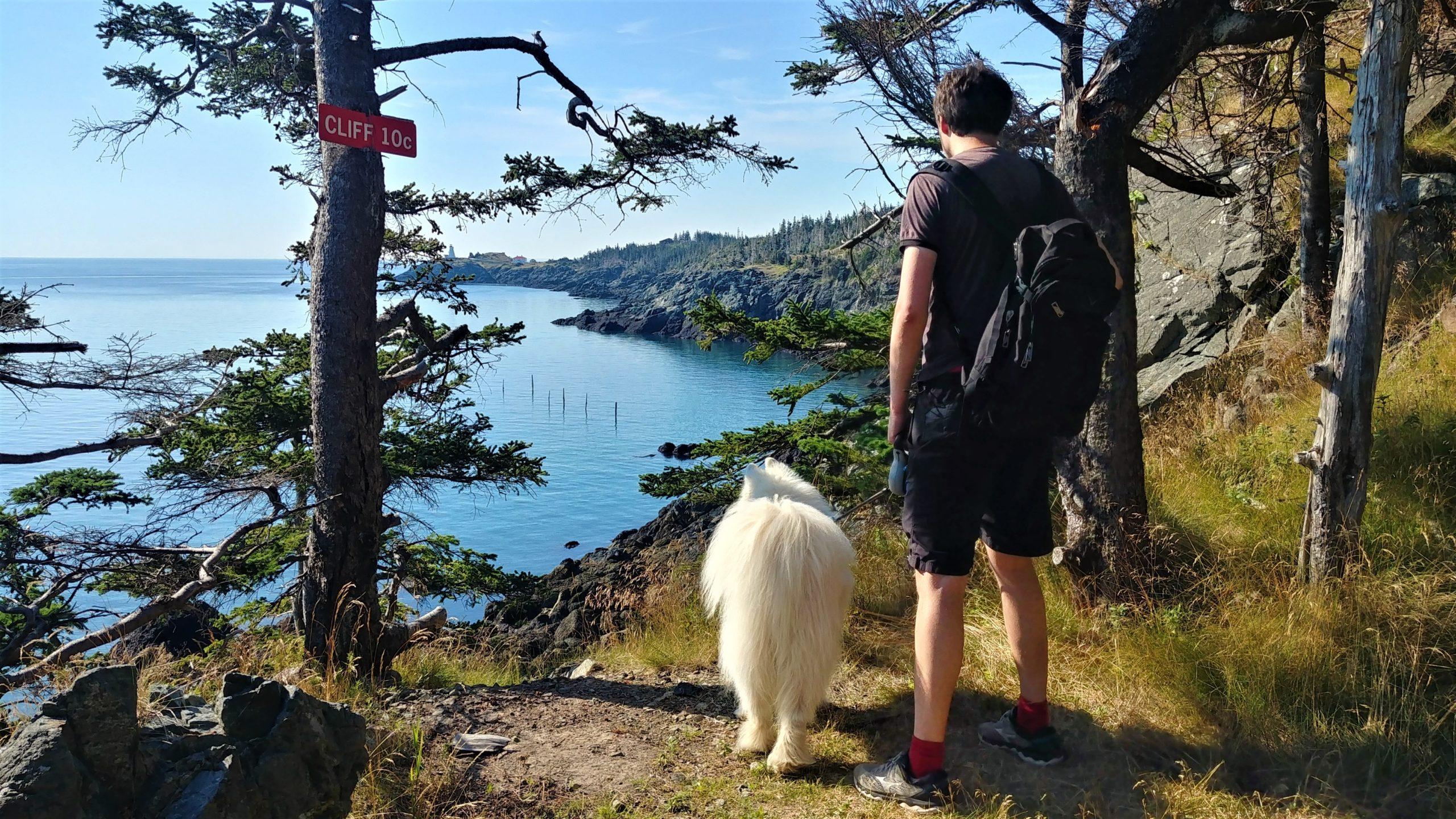 Grand Manan randonnée Red Trail chien