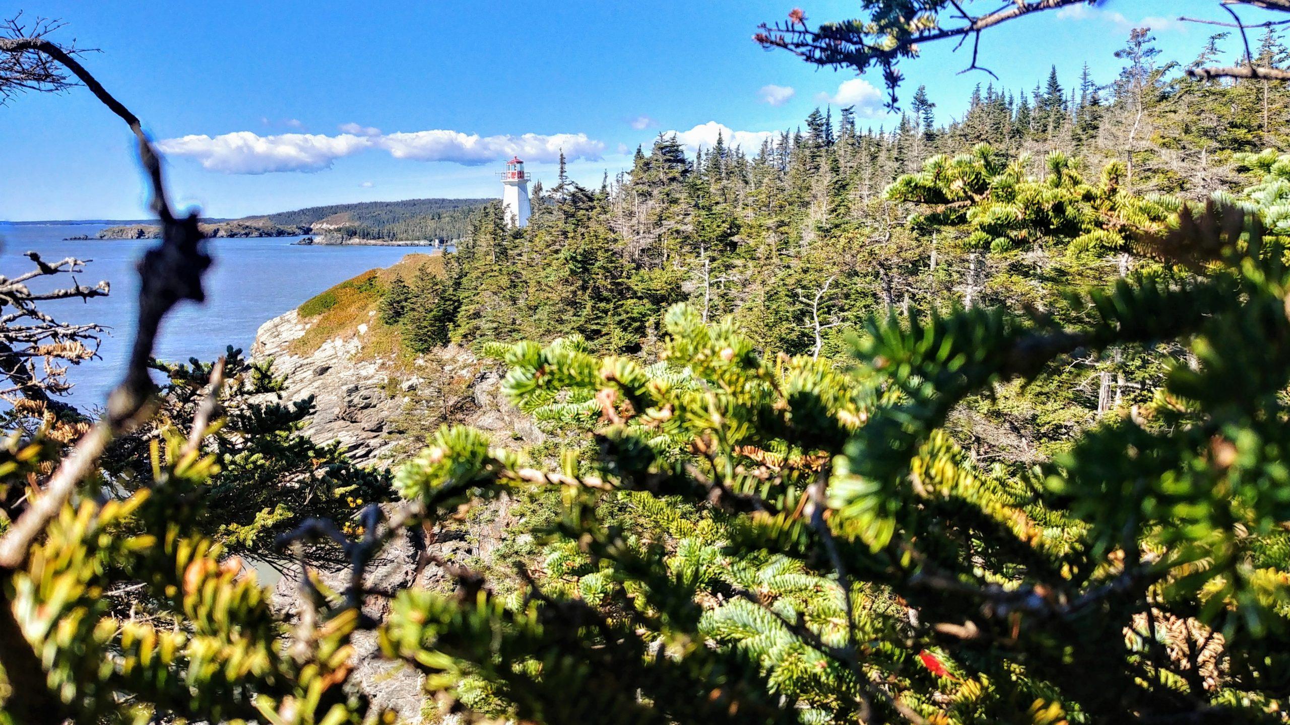 Split Rock Trail Musquash Lighthouse sentier randonnée Nouveau-Brunswick Canada voyage