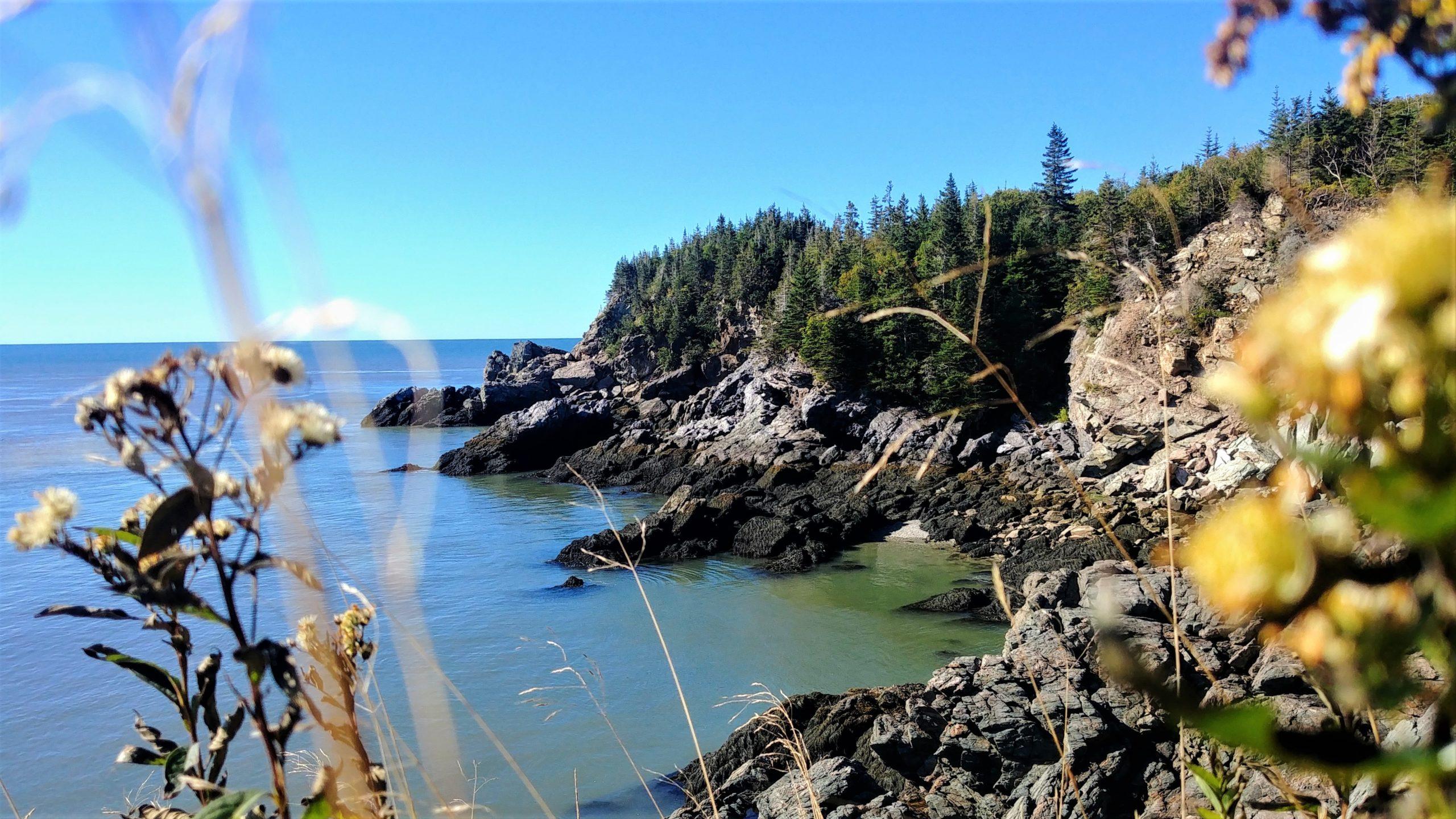 Split Rock Trail randonnée Saint-John infos pratiques blog voyage Nouveau-Brunswick Canada Arpenter le chemin