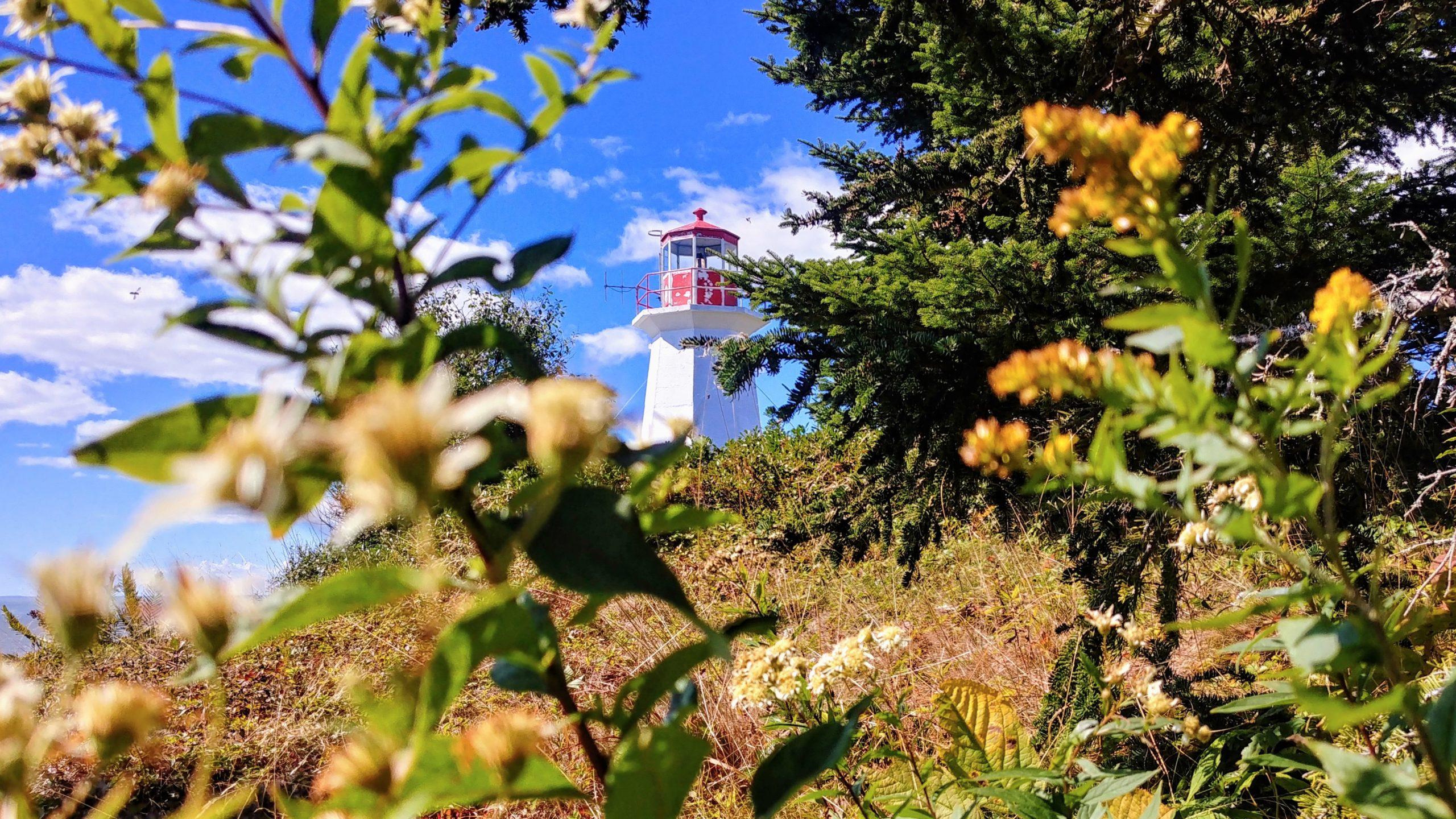 Split Rock Trail randonnée baie de Fundy Nouveau-Brunswick Canada Arpenter le chemin