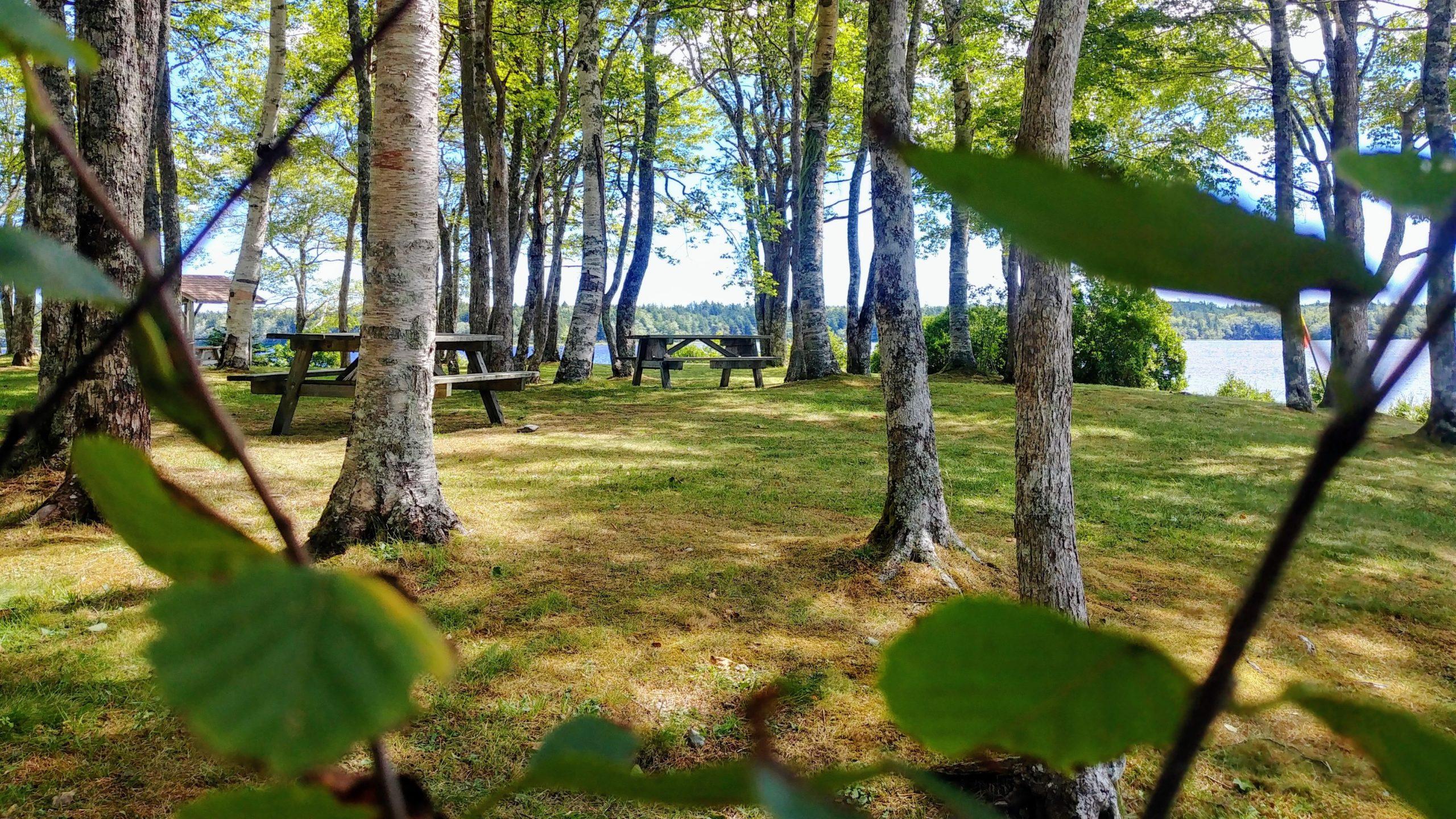 Yarmouth parc provincial Ellenwood infos pratiques voyage Nouvelle-Écosse Arpenter le chemin