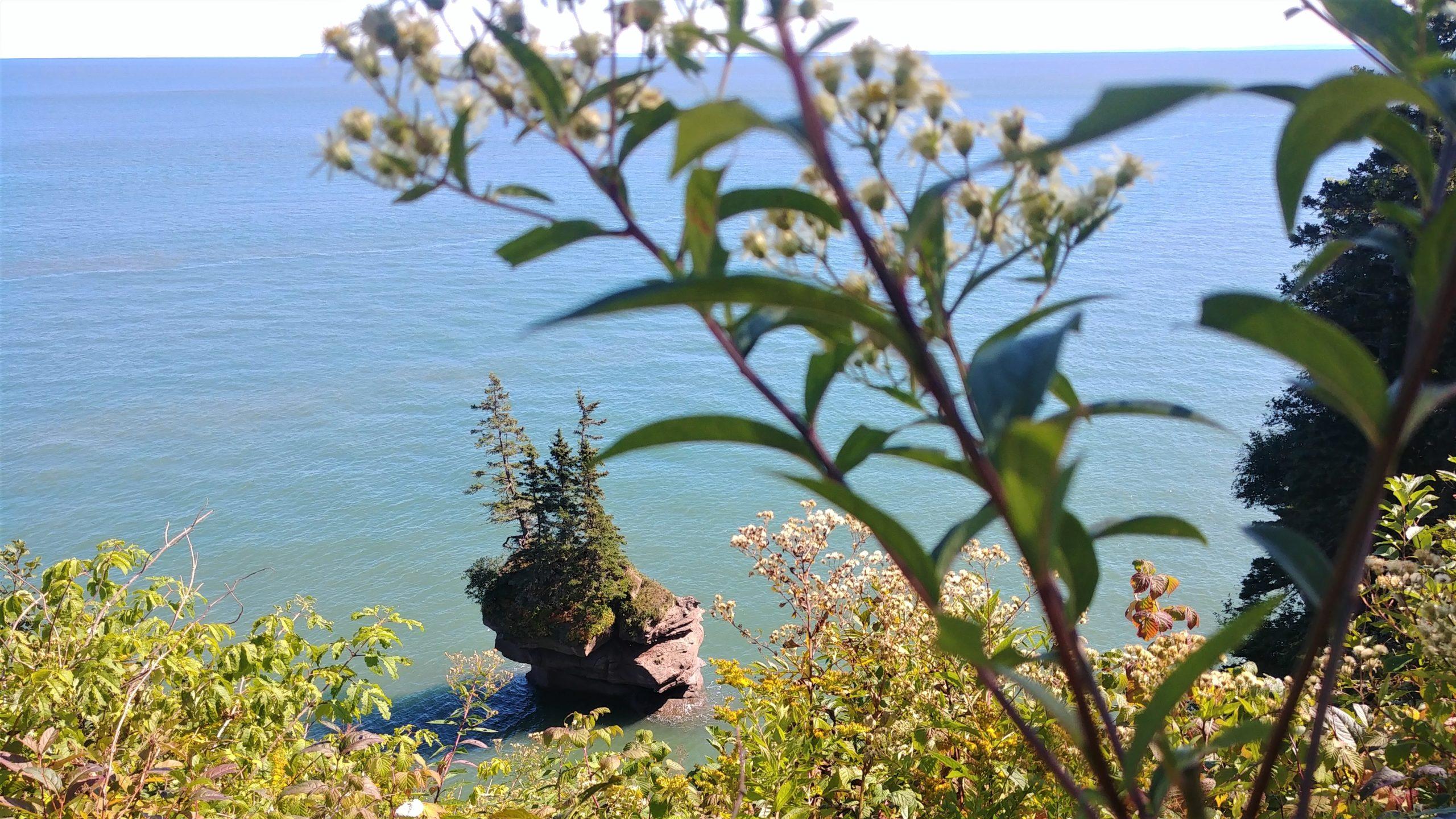 Fundy trail Parkway visiter la baie de Fundy Nouveau-Brunswick