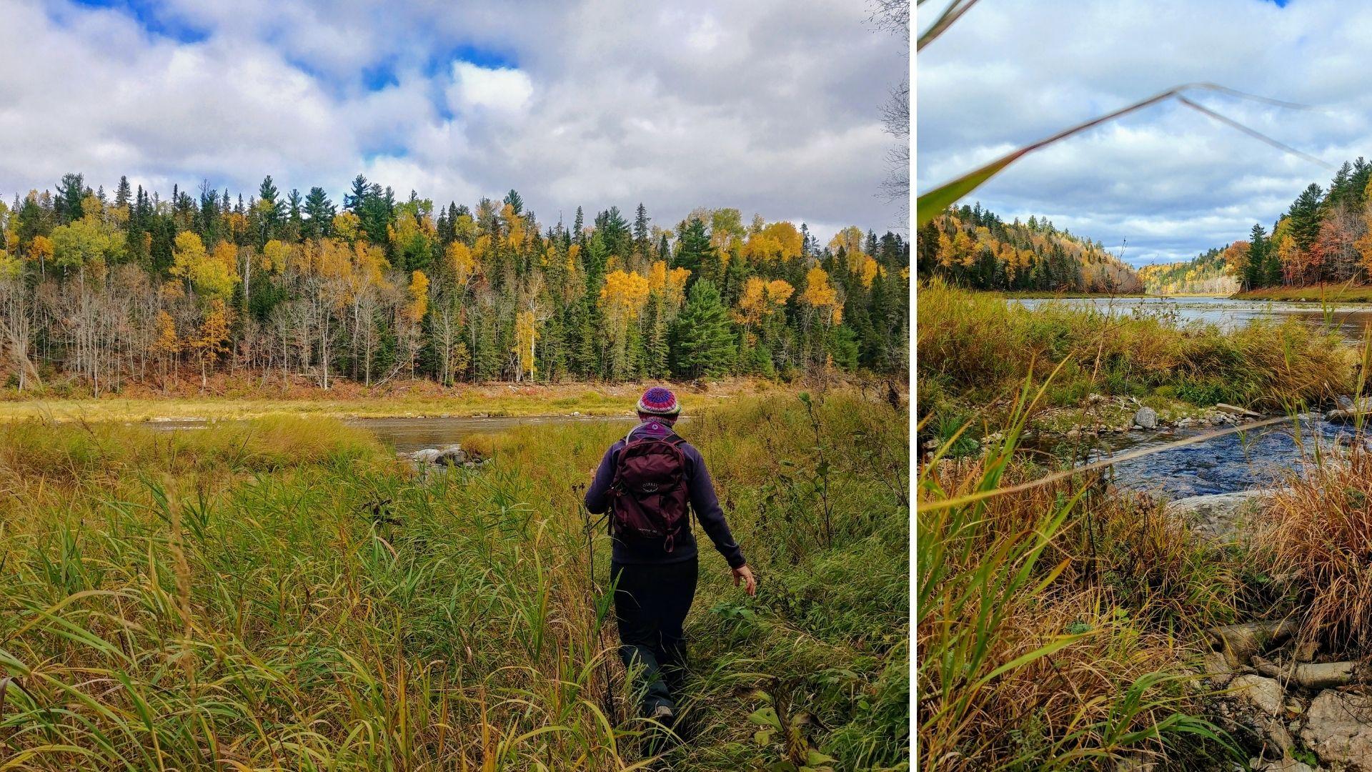 Sentier Nepisiguit Migmaq trail infos pratiques - Nouveau-Brunswick, Canada