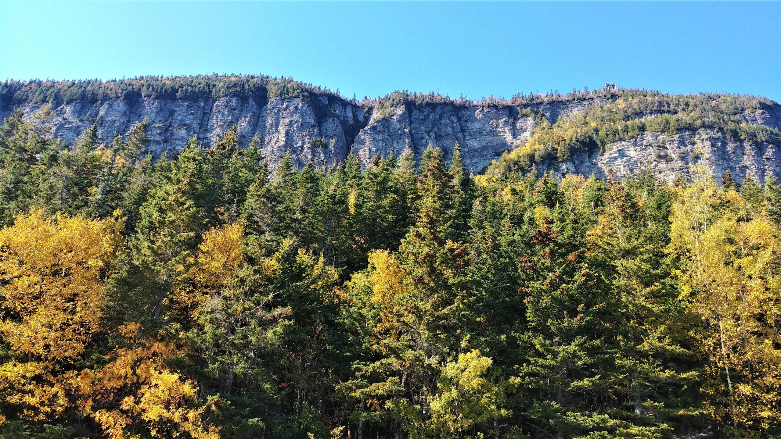 Cap Bon-Ami parc national Forillon Gaspésie automne