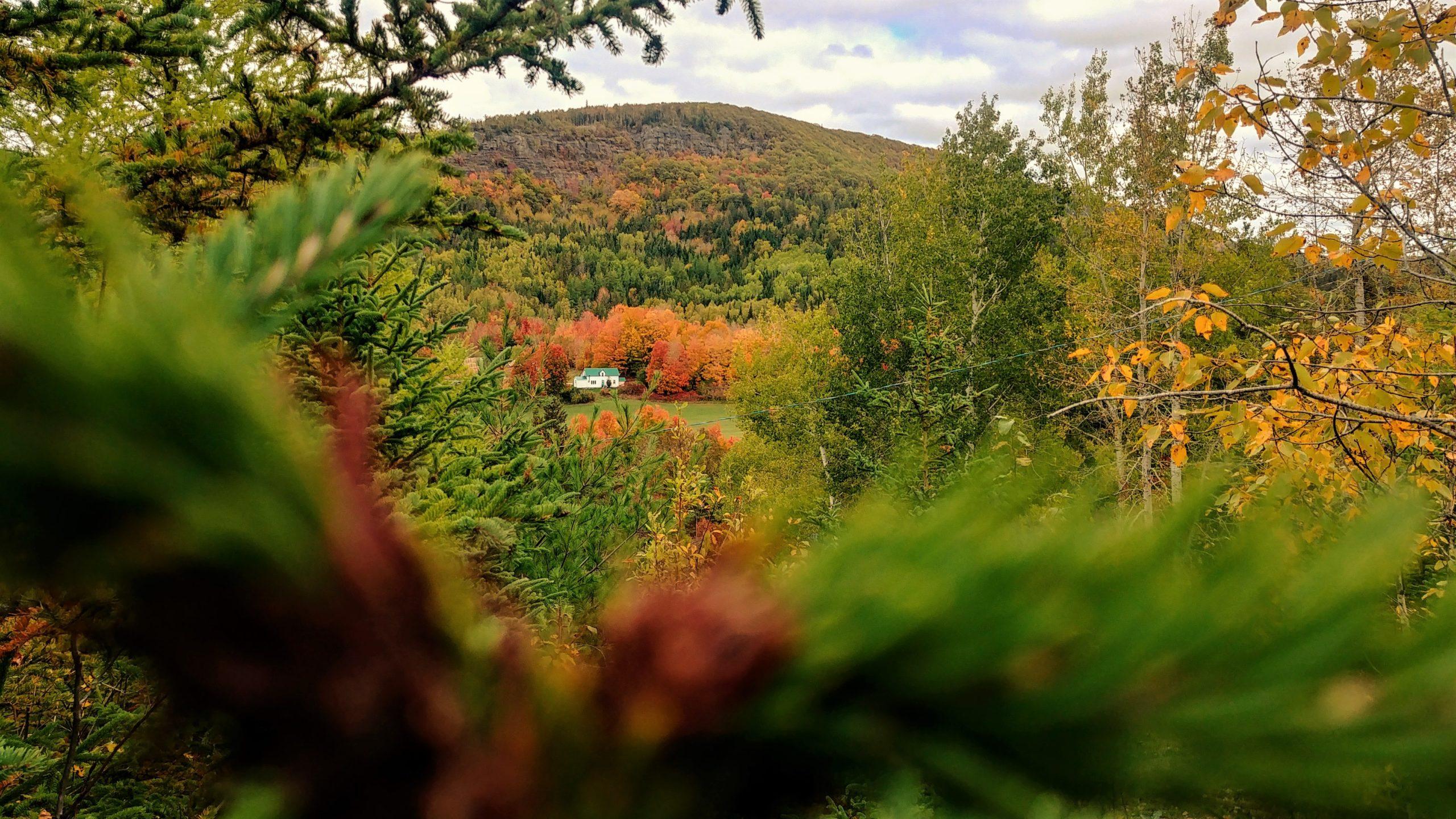 Poley Mountain couleurs d'automne Nouveau-Brunswick Canada blog voyage Arpenter le chemin
