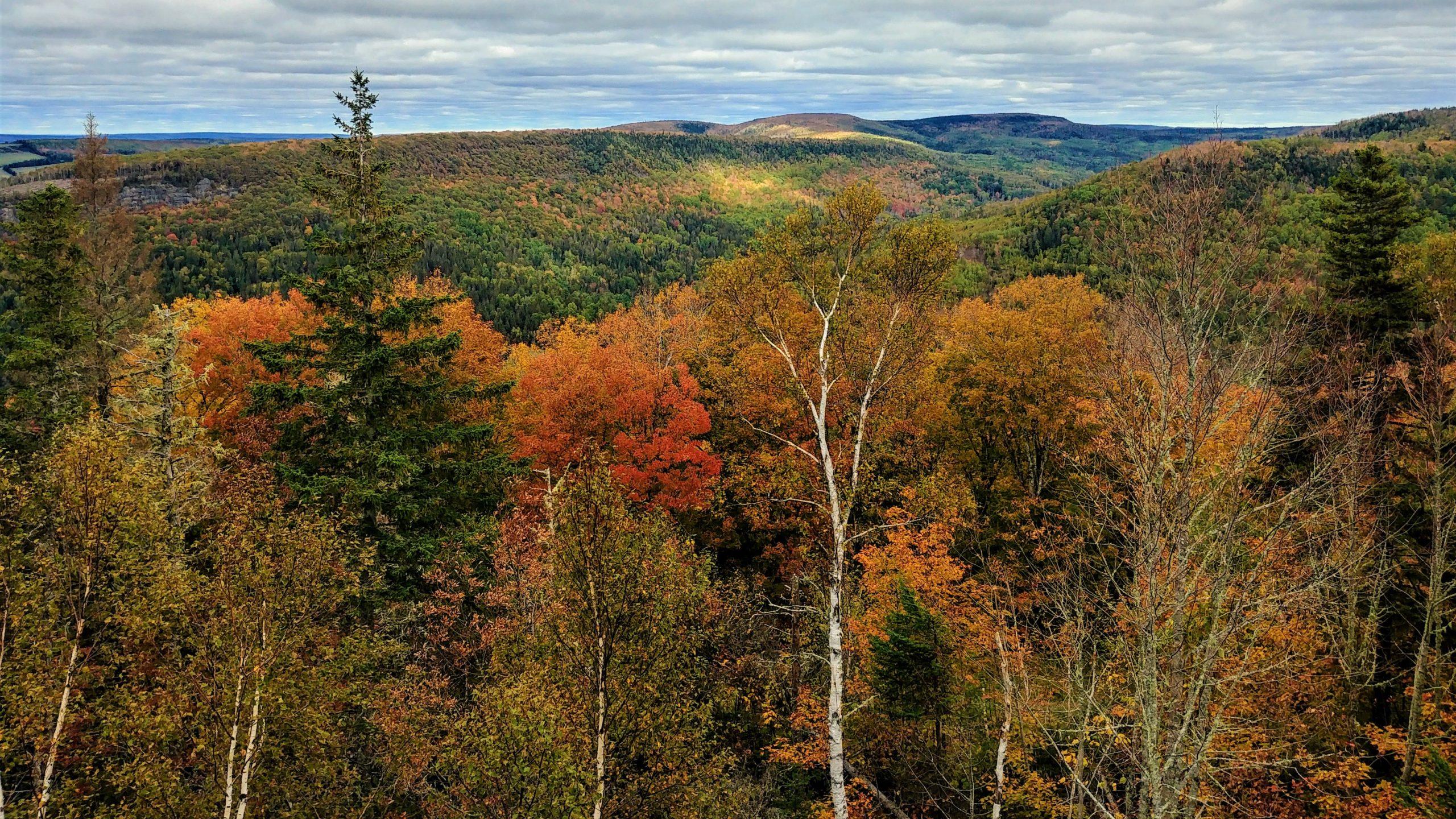 Randonnée couleurs automne Nouveau-Brunswick - Poley Mountain Sussex