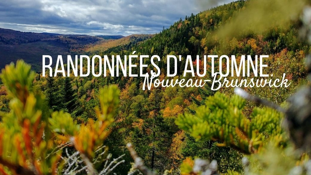 Randonnées d'automne au Nouveau-Brunswick