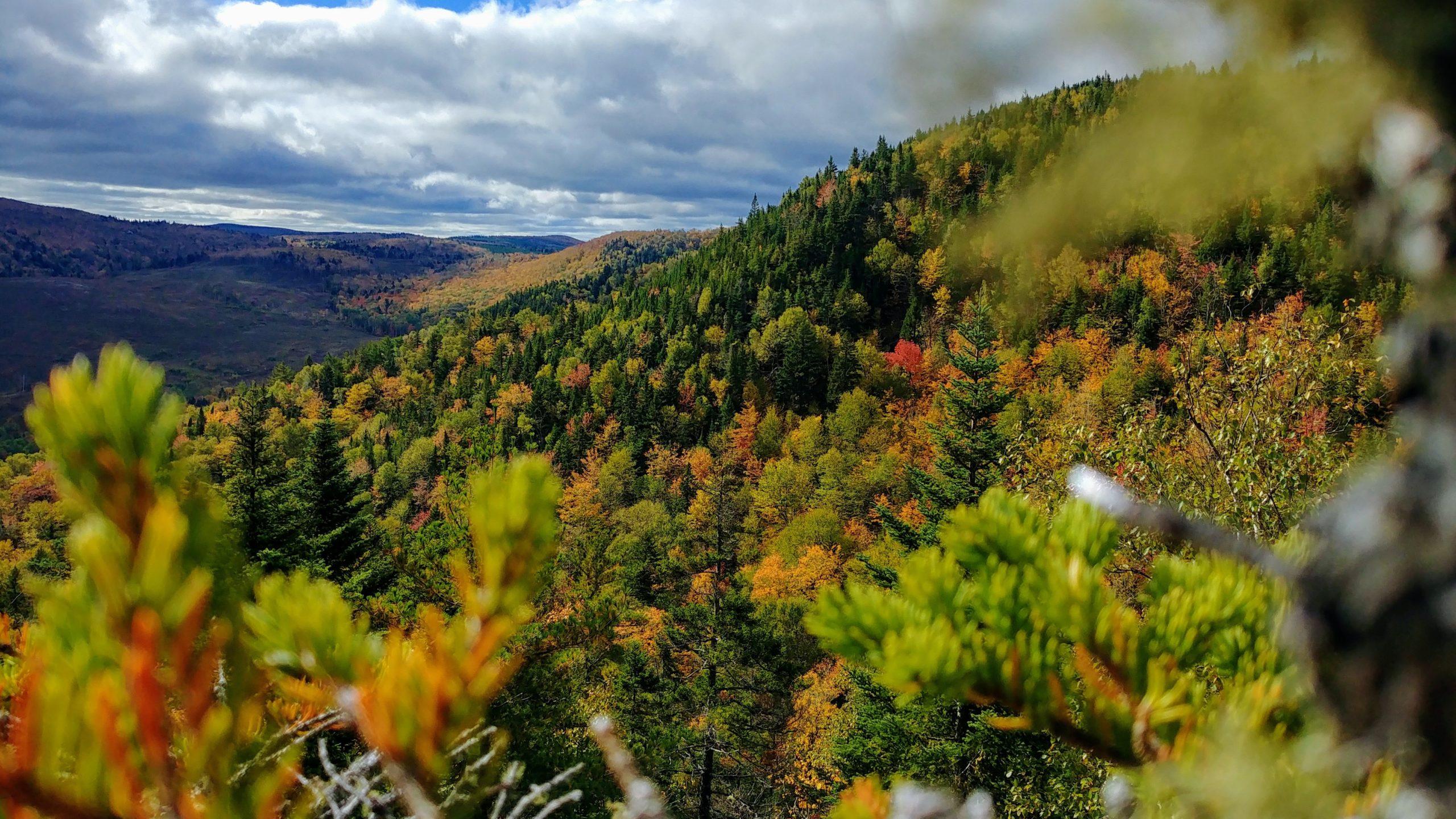 Sentiers randonnées automne Nouveau-Brunswick - Friar's Nose Sussex