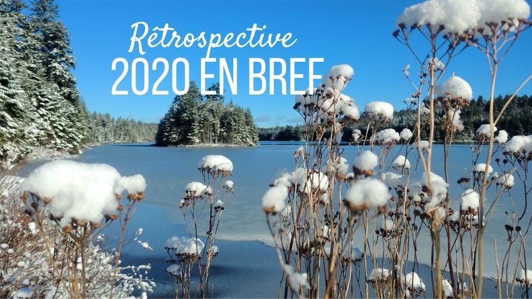 2020 rétrospective voyages