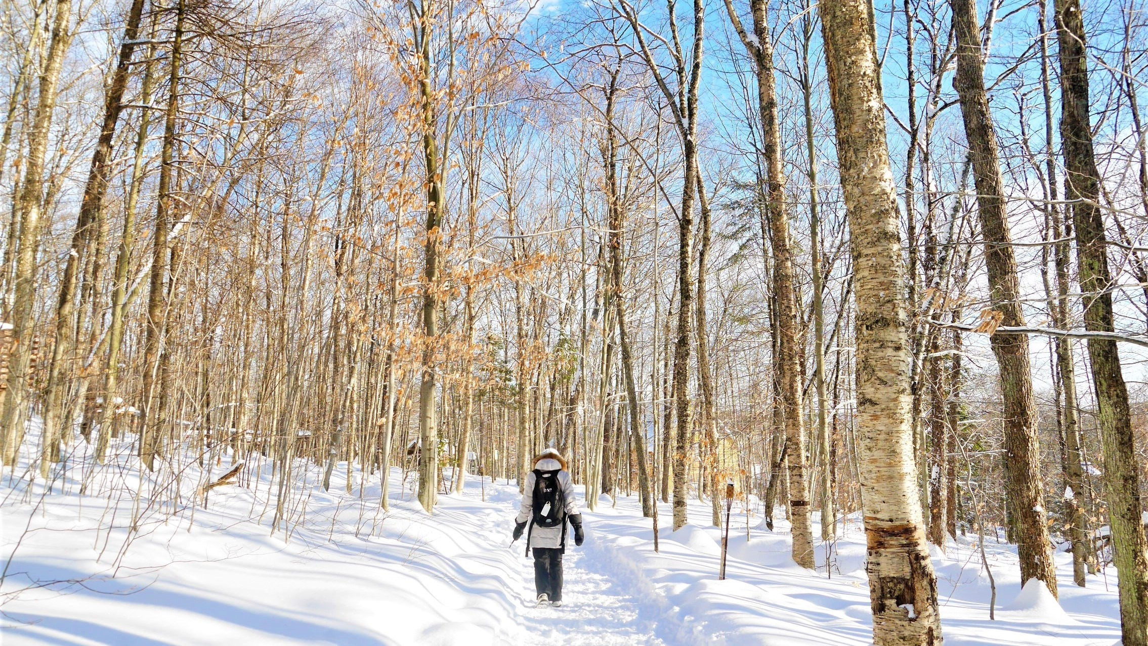 Quebec Noel station duchesnay que faire ou dormir blog voyage canada hiver arpenter le chemin