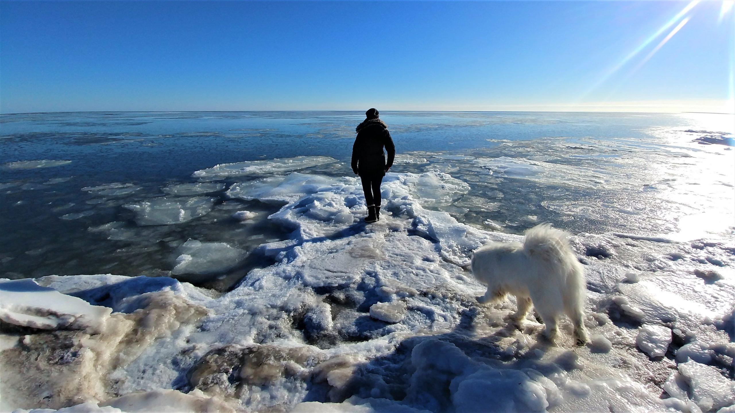 Canada hiver tempete que faire road-trip blog voyage arpenter le chemin