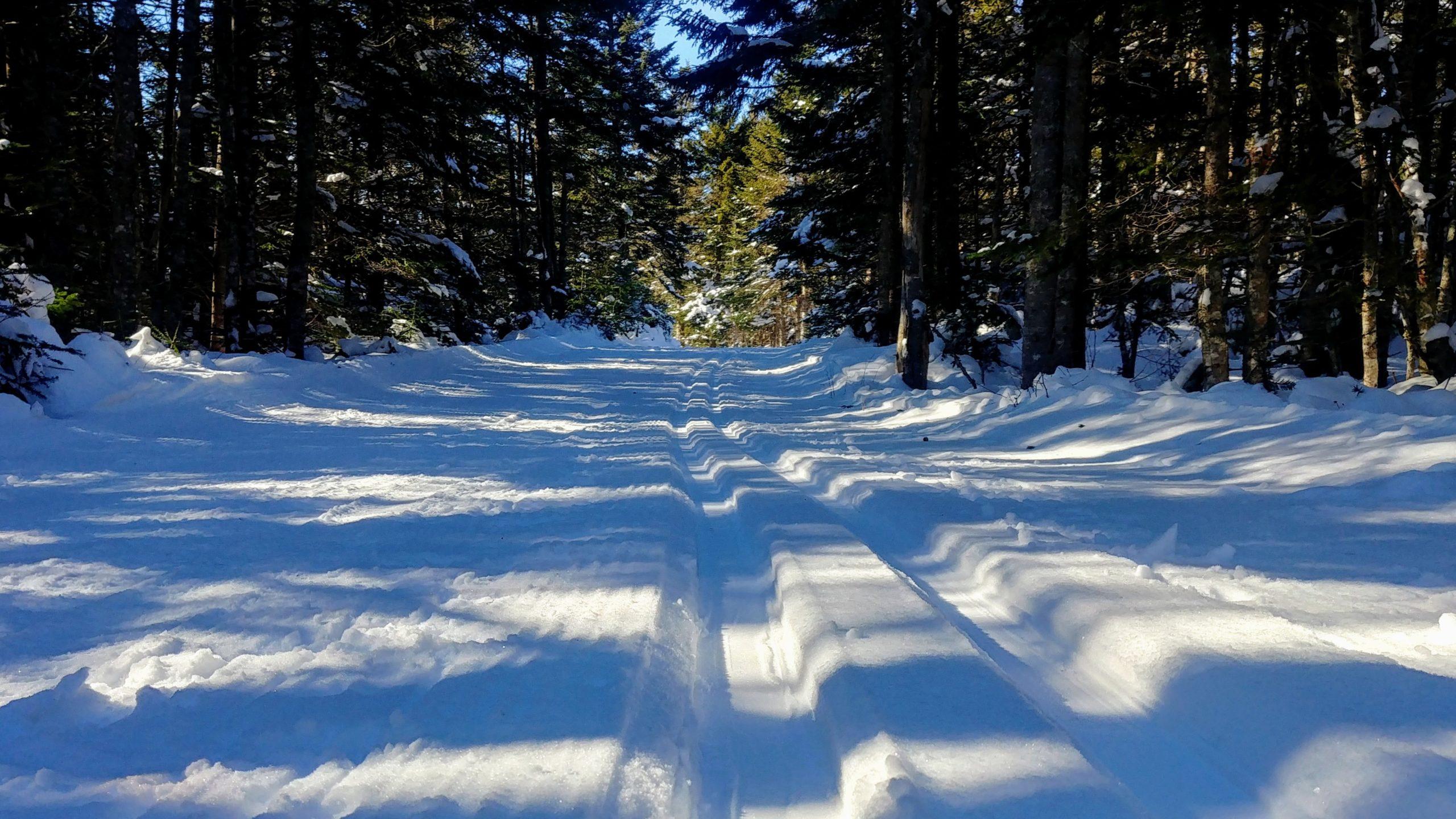 Parc Fundy hiver infos pratiques ski de fond secteur Chignecto