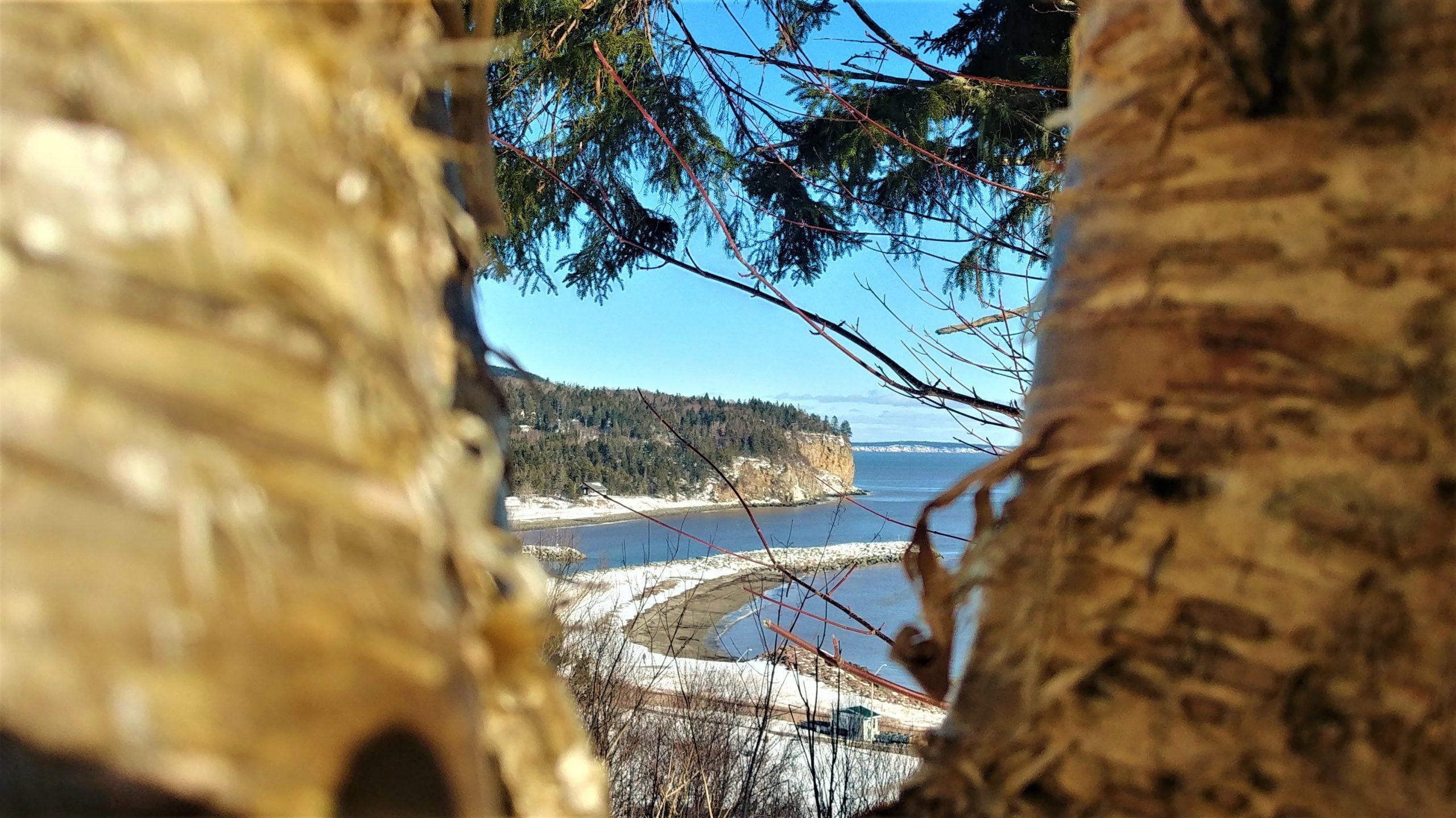 Parc national Fundy que faire en hiver Nouveau-Brunswick Canada