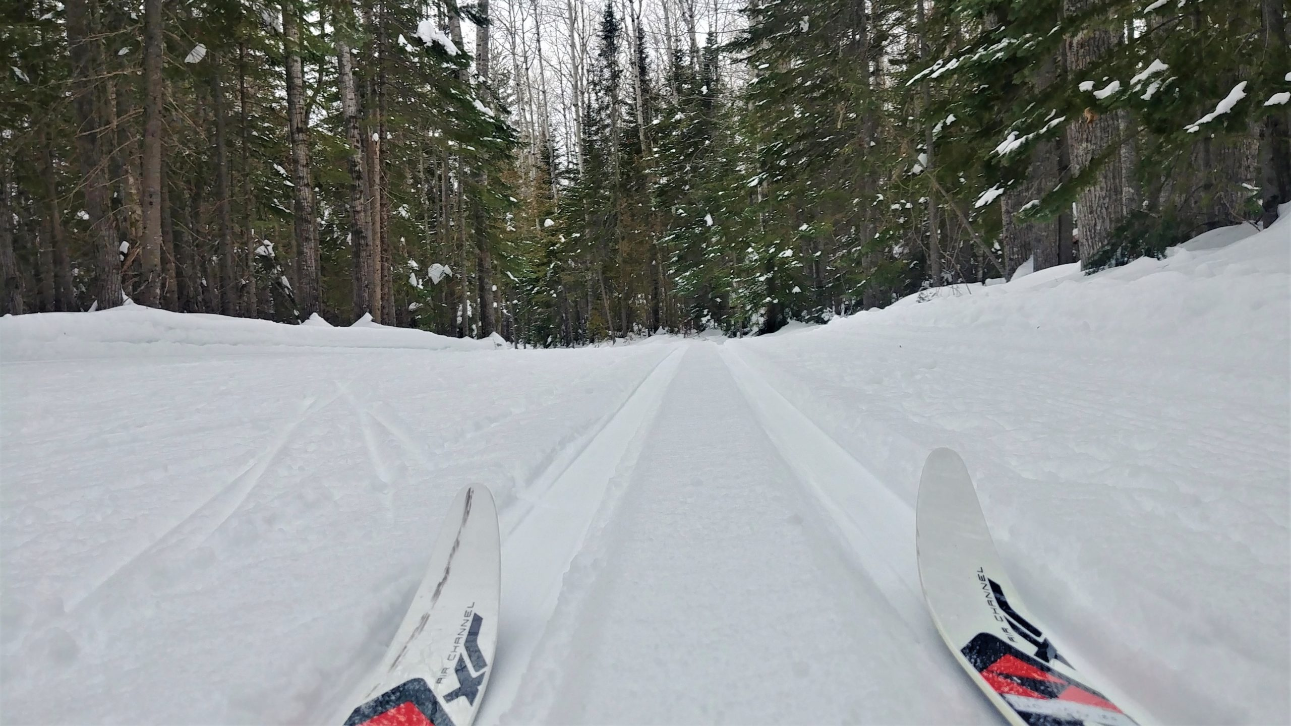 Région Chaleur où faire ski fond Club ours des neiges Bathurst