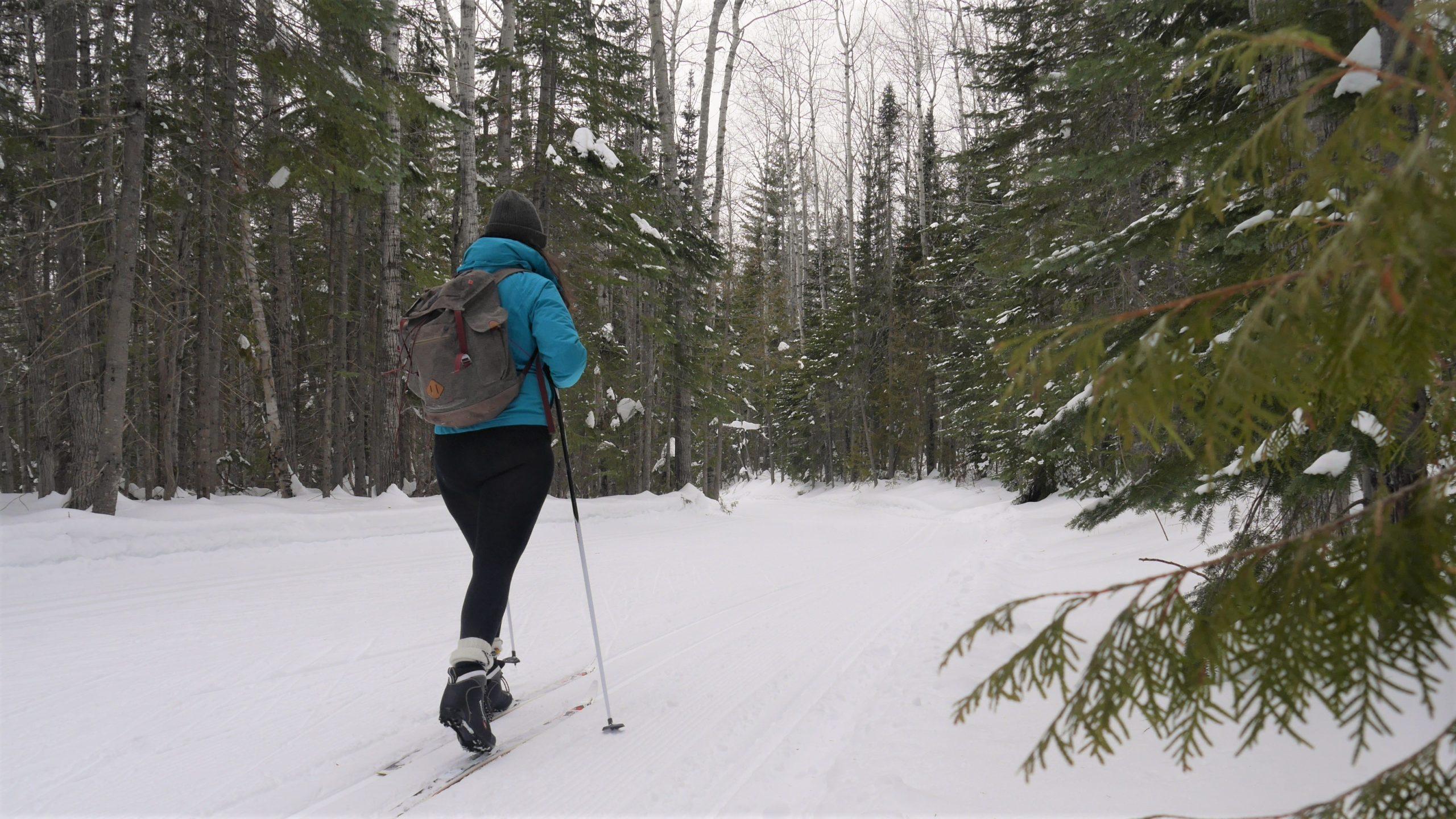 Région Chaleur où louer ski fond Club ours des neiges Bathurst