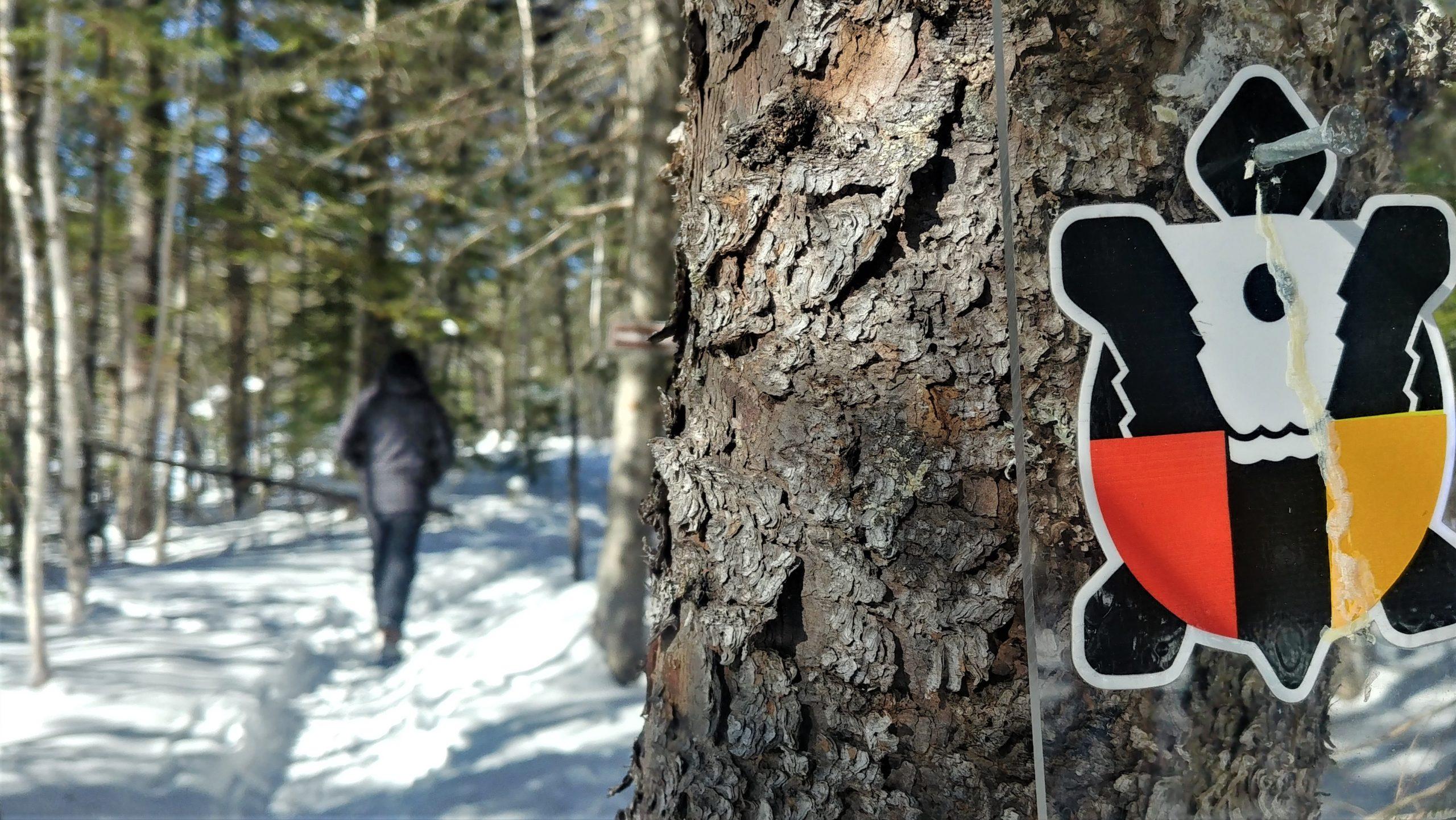Région Chaleur randonnée raquettes sentier Nepisiguit Migmaq Nouveau-Brunswick 2