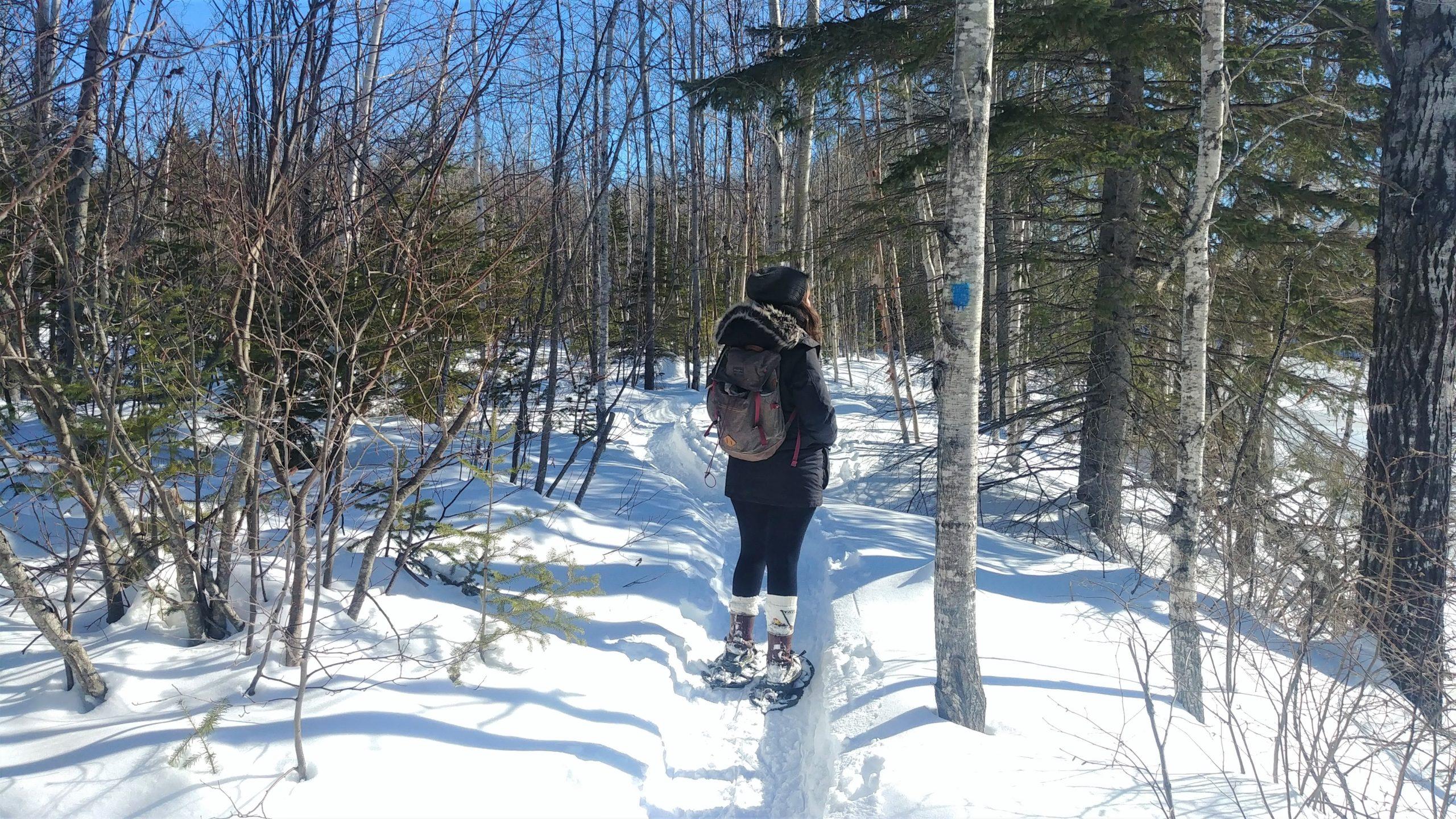 Région Chaleur randonnée raquettes sentier Nepisiguit Migmaq Nouveau-Brunswick