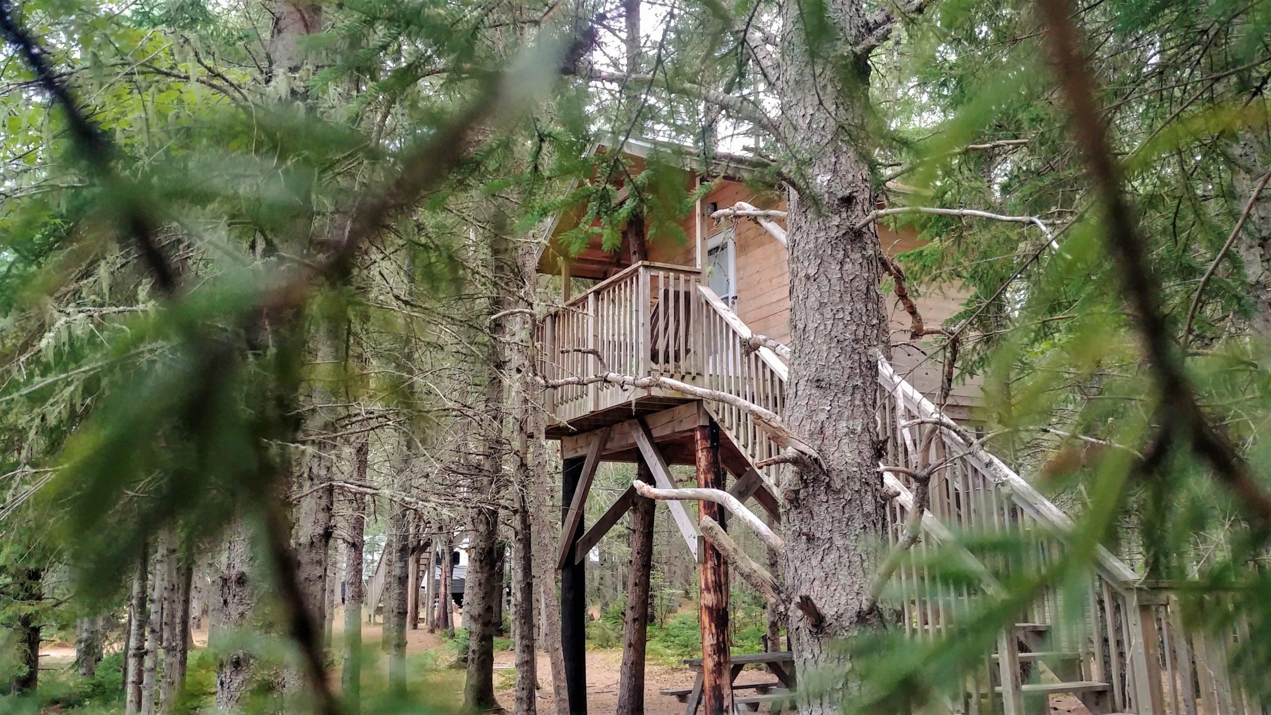 Cabane perchée Miramichi Nouveau-Brunswick
