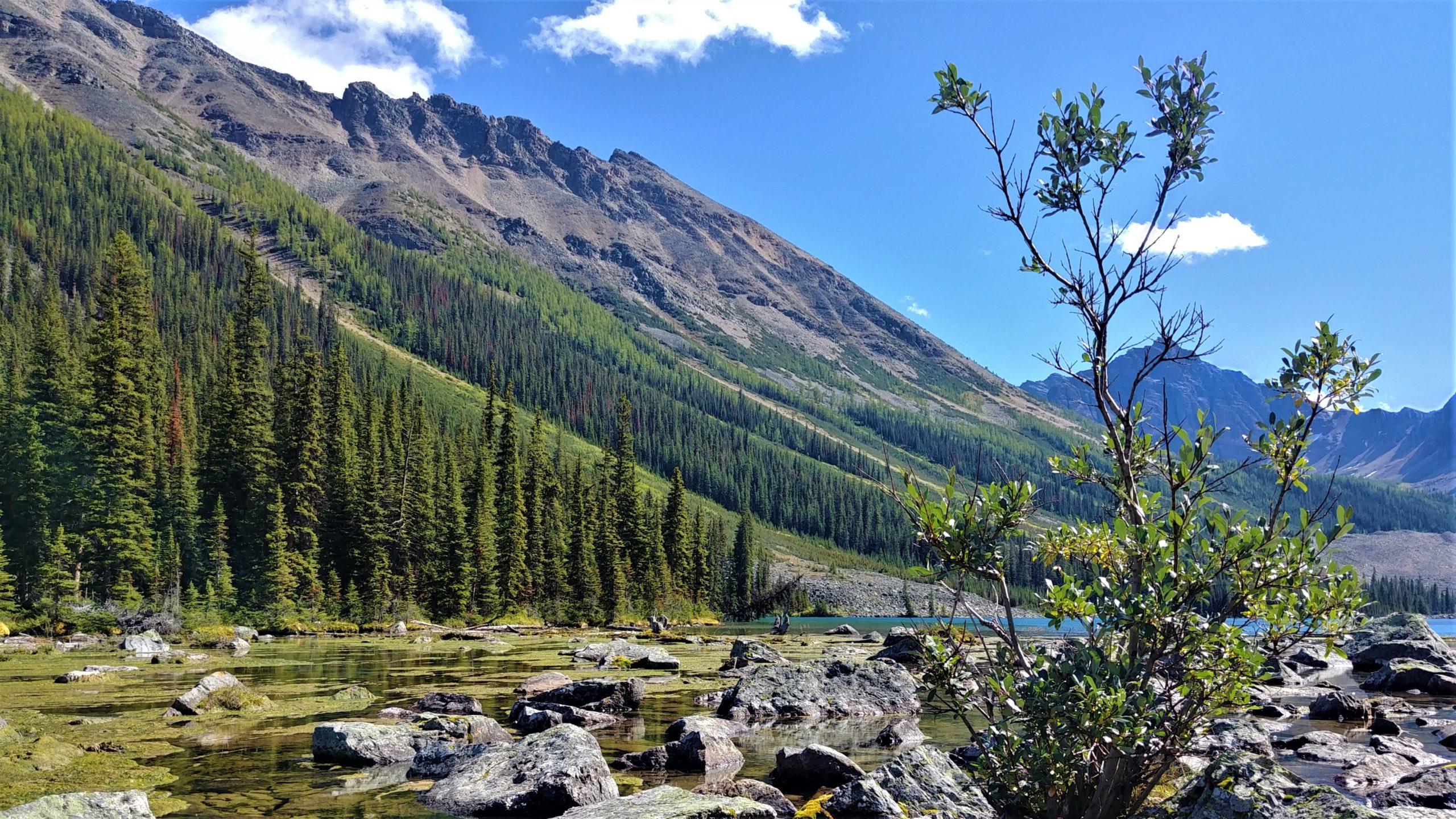 Randonnée Lacs de la consolation Lac Moraine parc national de Banff Canada