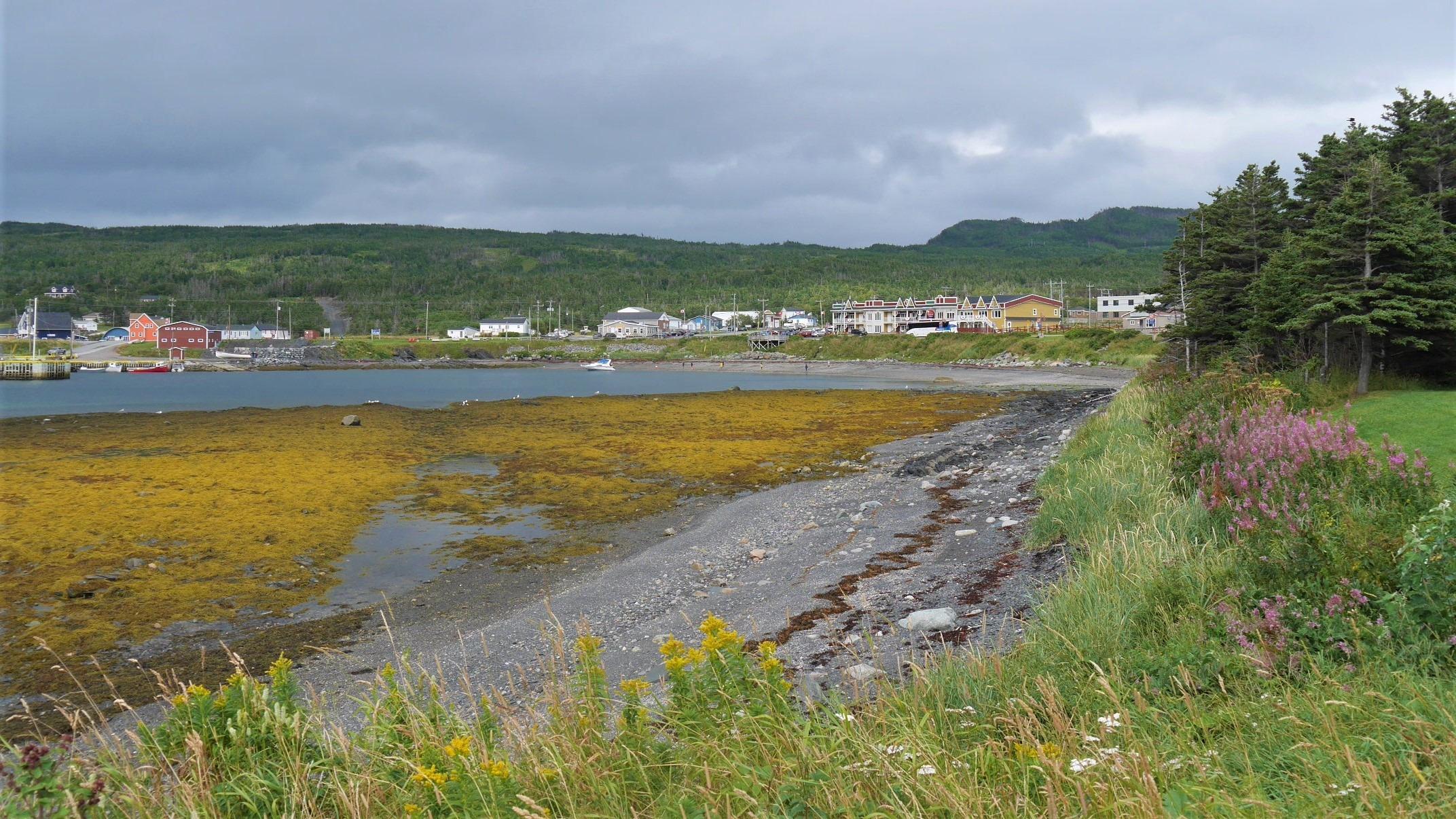 Terre-Neuve Rocky Harbour Gros Morne blog voyage