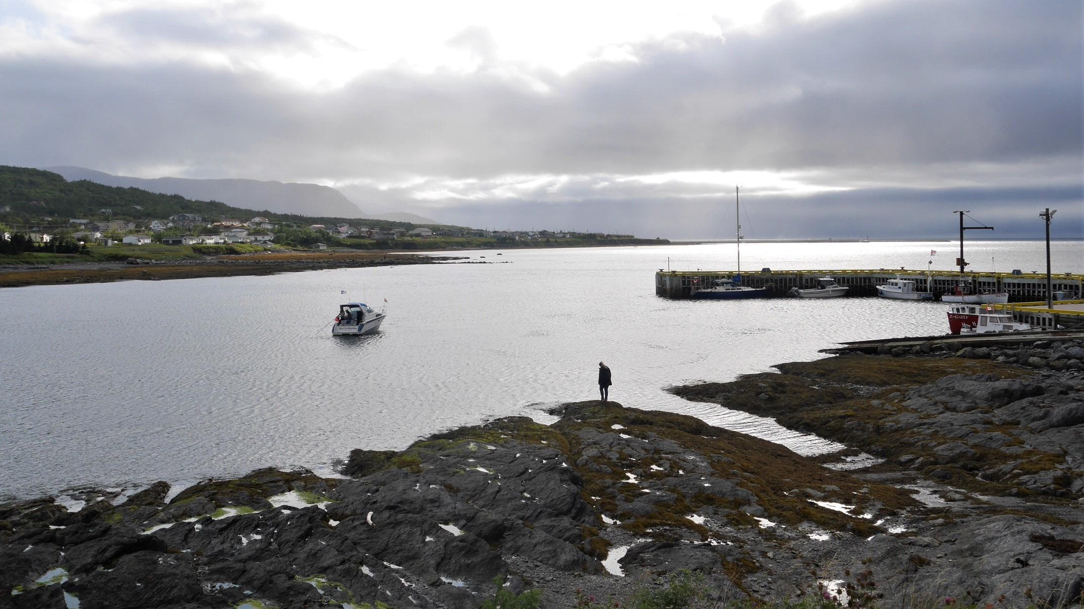 Terre-Neuve Rocky Harbour que voir que faire blog voyage Canada