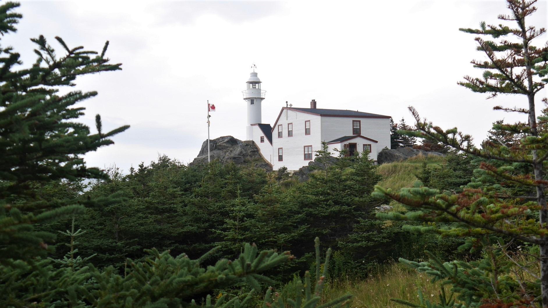 Terre-Neuve parc national Gros-Morne phare Lobster Cove Head