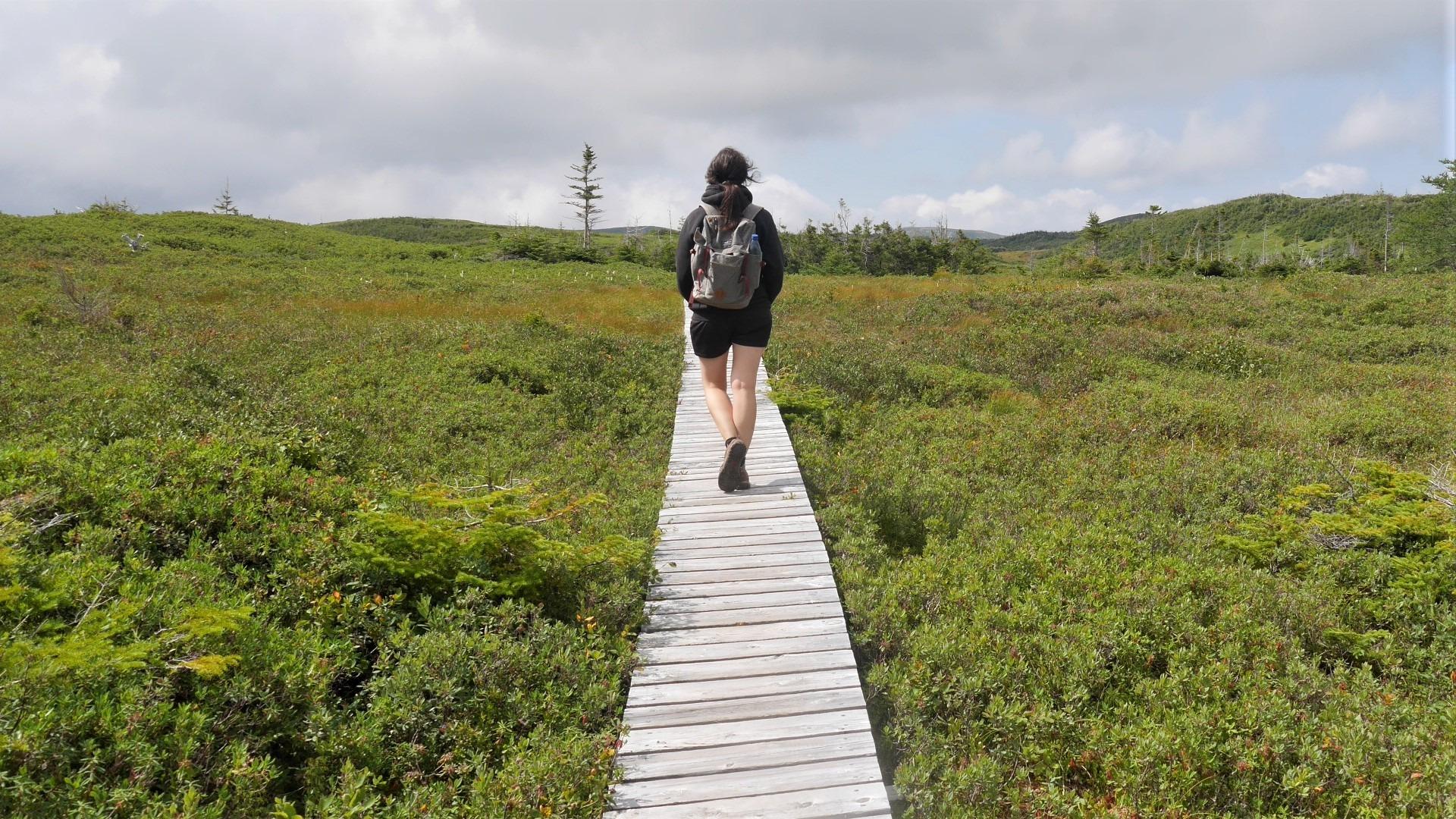 Terre-Neuve parc national Gros-Morne sentier Lookout Trail