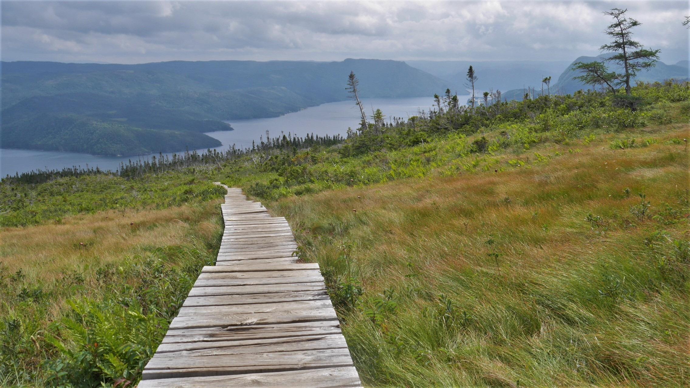 Terre-Neuve randonnée sentiers parc national Gros-Morne Canada