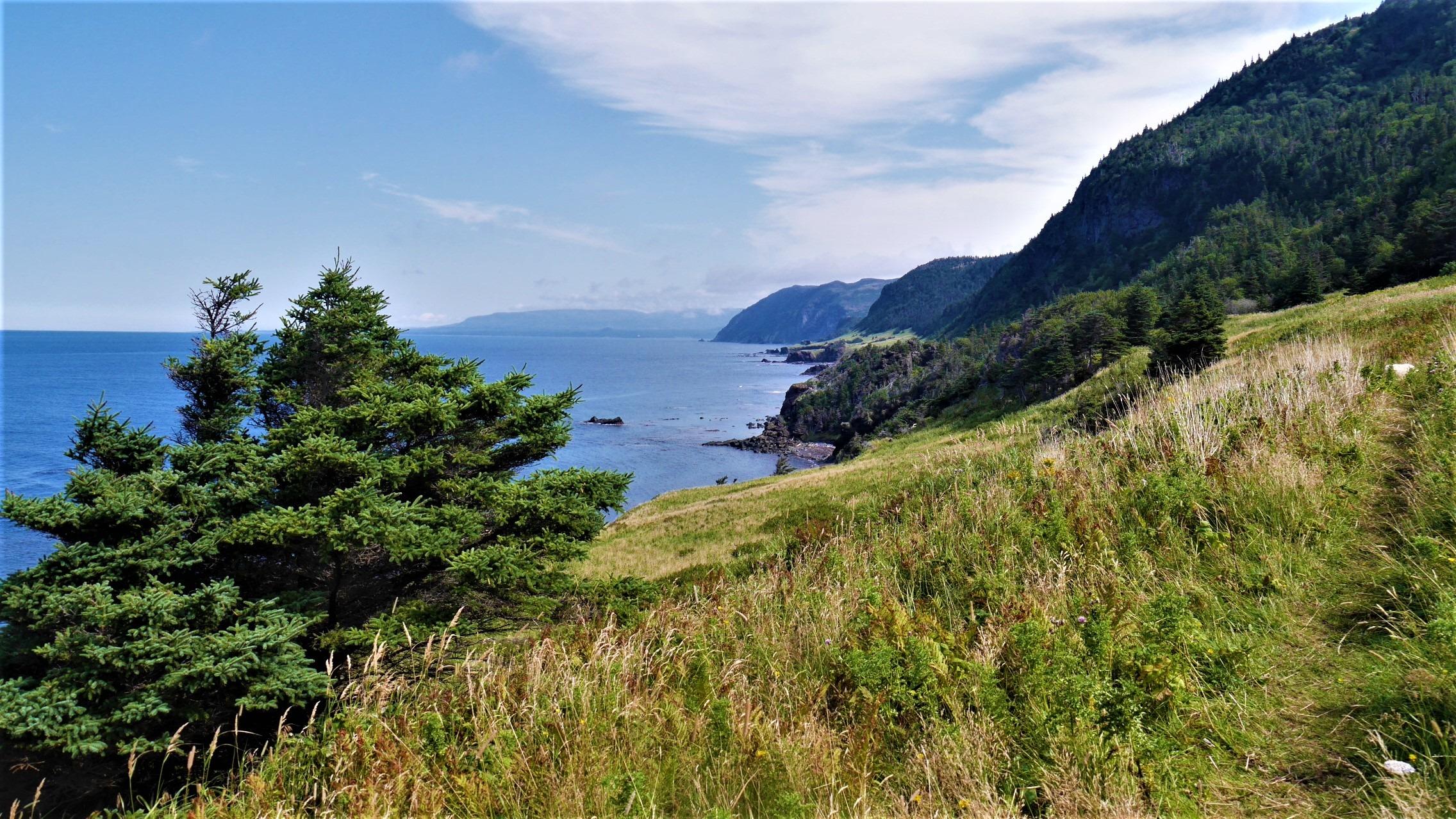 Terre-Neuve sentier Green Gardens randonnée Canada