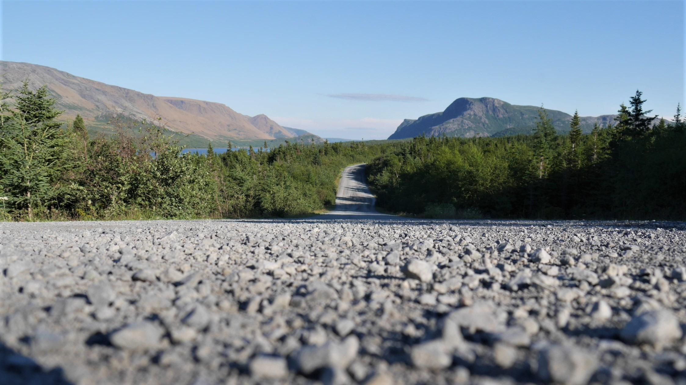 terre-neuve canada road-trip voyage blog arpenter le chemin