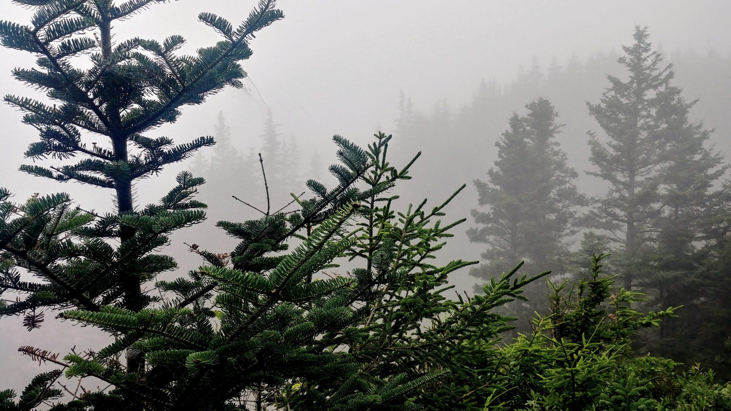 4- Cape Chignecto infos pratiques longue randonnée Nouvelle-Écosse