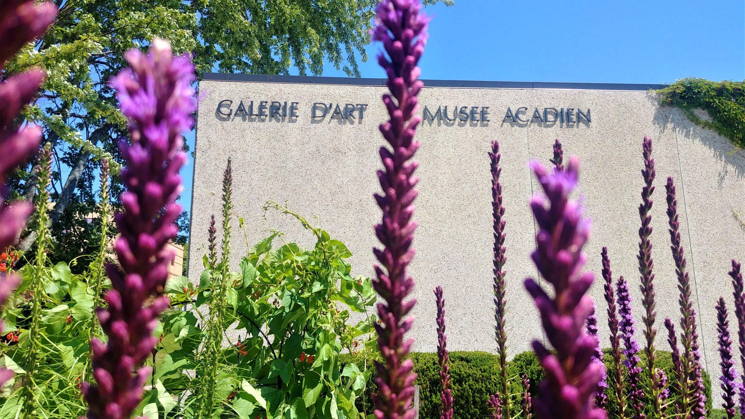 Musée acadien université Moncton infos pratiques