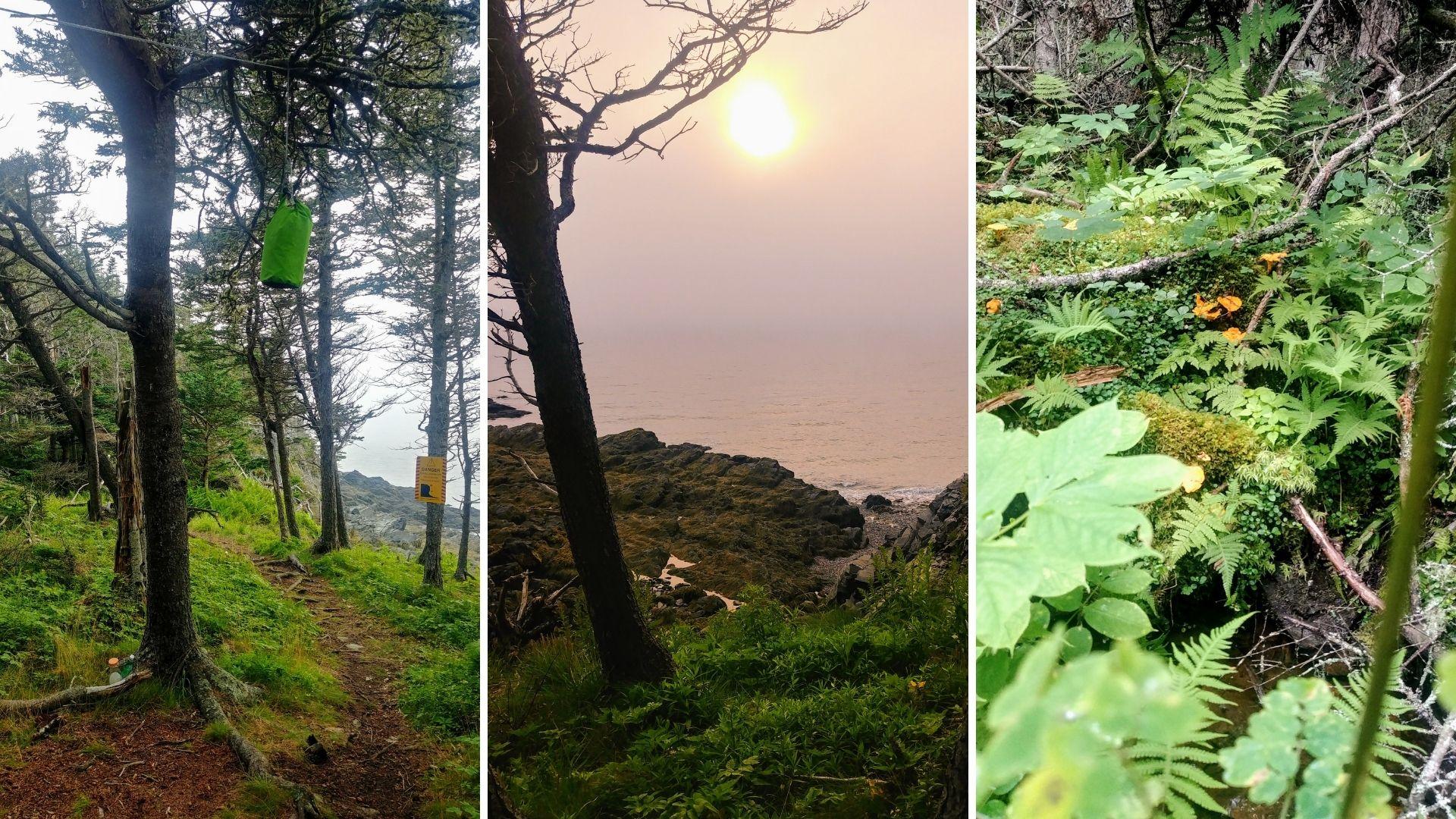 Randonnée Cap Chignecto Nouvelle-Écosse - camping Little Bald Rock