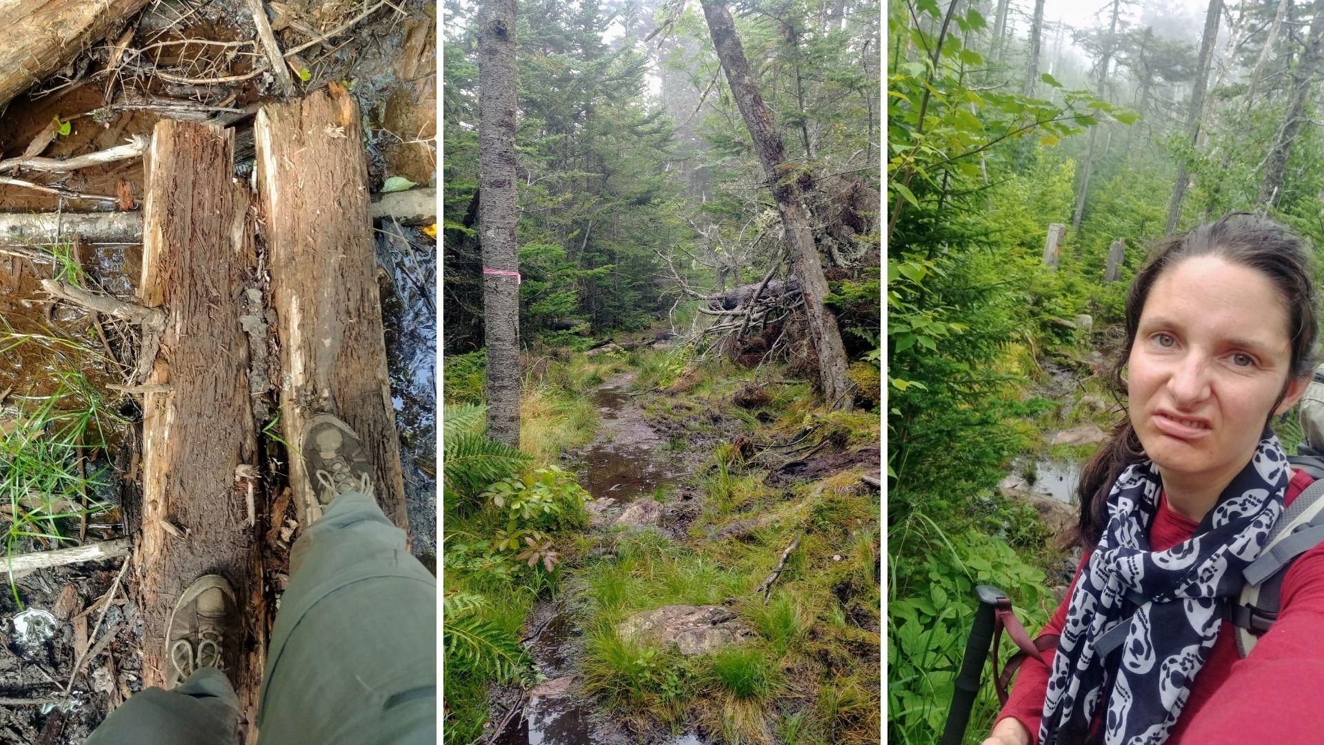 Randonnée parc provincial Cape Chignecto Nouvelle-Écosse Canada