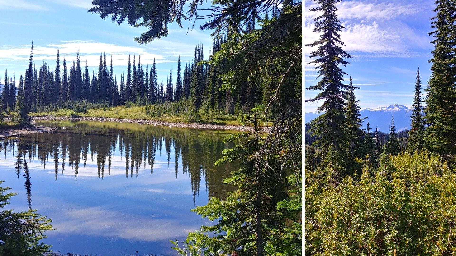 Randonnées Revelstoke road-trip Canada